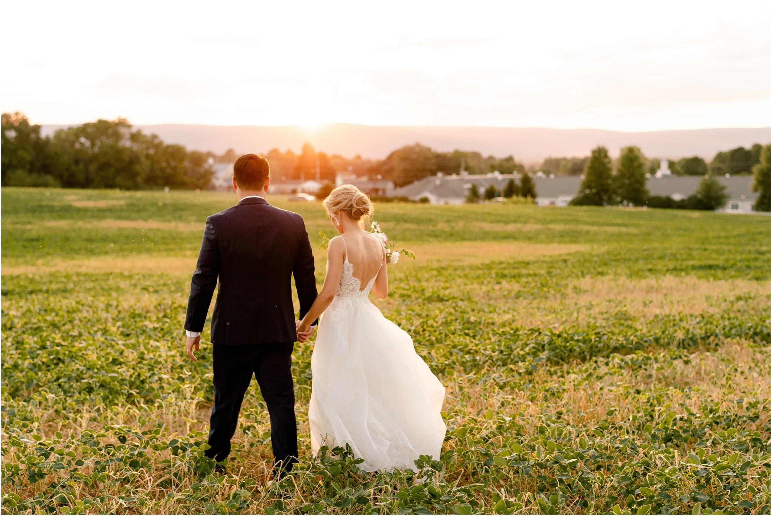 hannah leigh photography Walkers Overlook Wedding Walkersville MD_3565.jpg