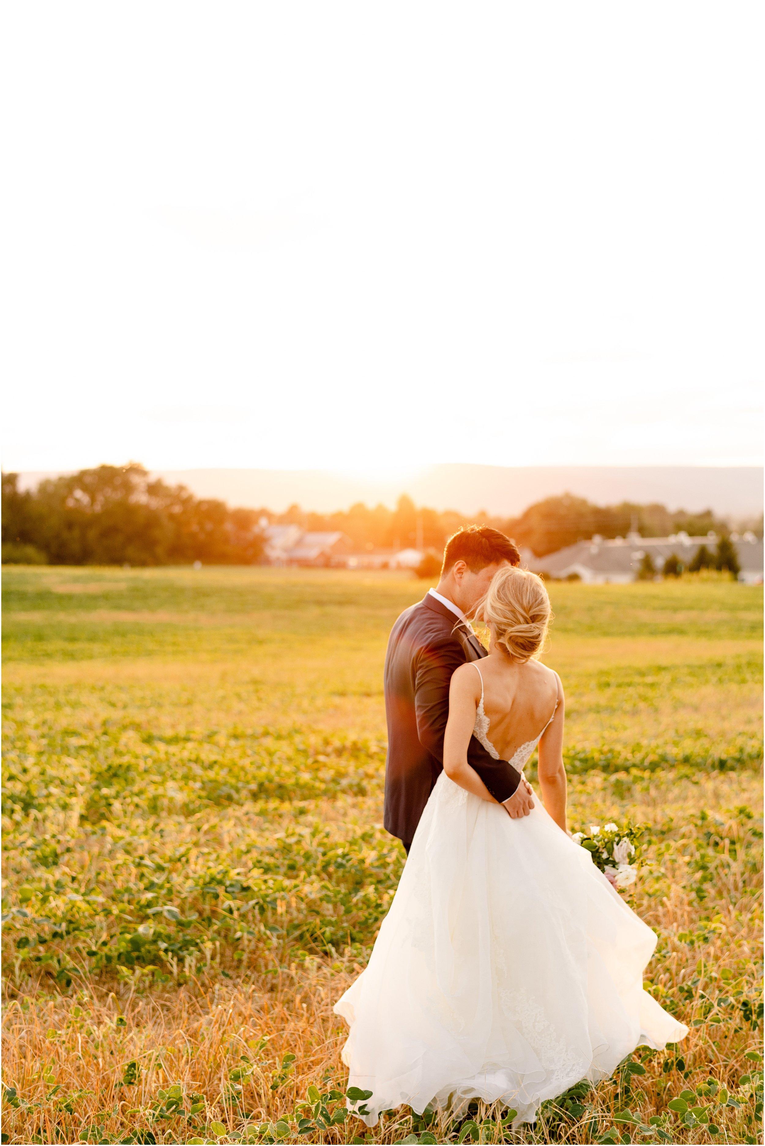 hannah leigh photography Walkers Overlook Wedding Walkersville MD_3559.jpg