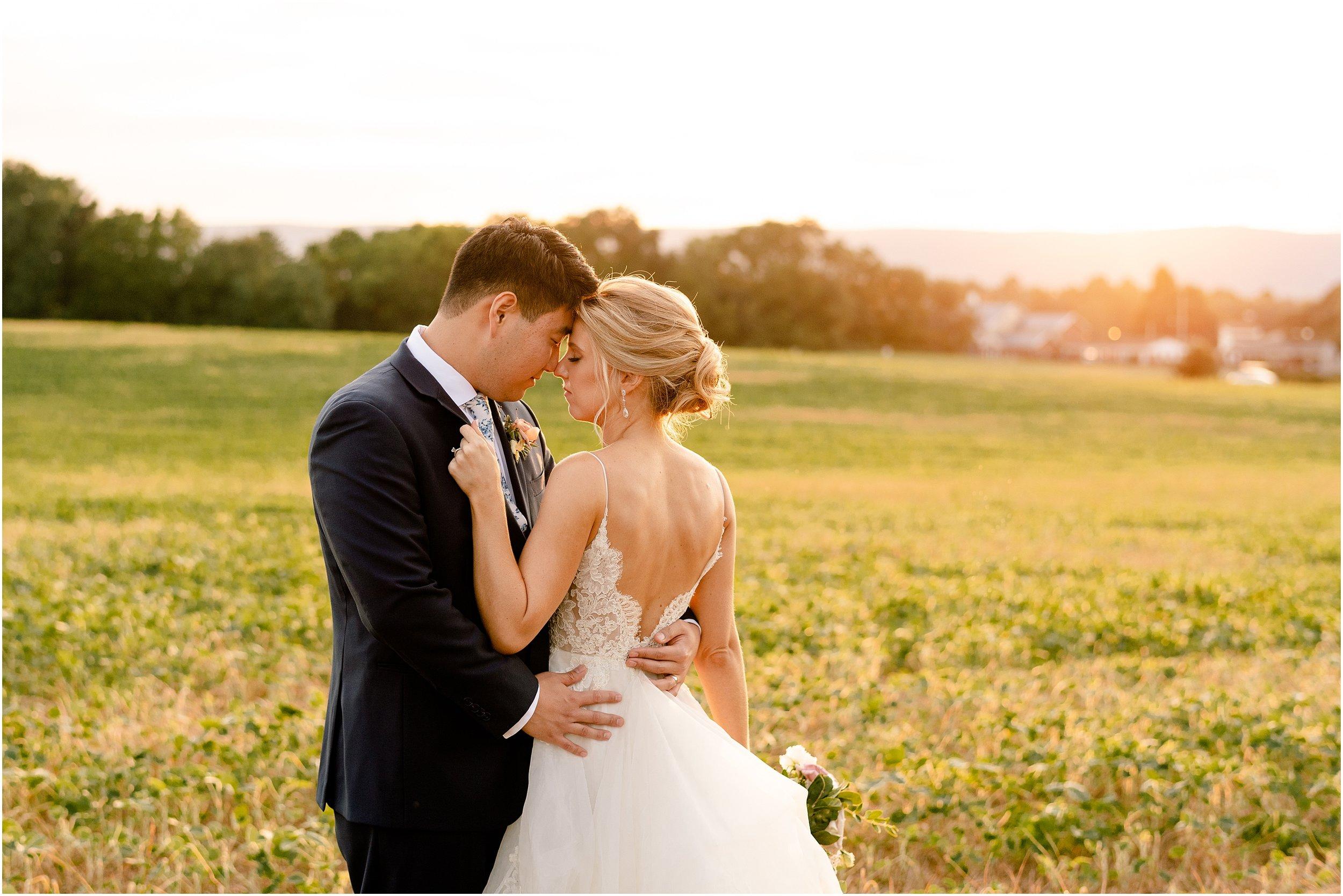hannah leigh photography Walkers Overlook Wedding Walkersville MD_3551.jpg