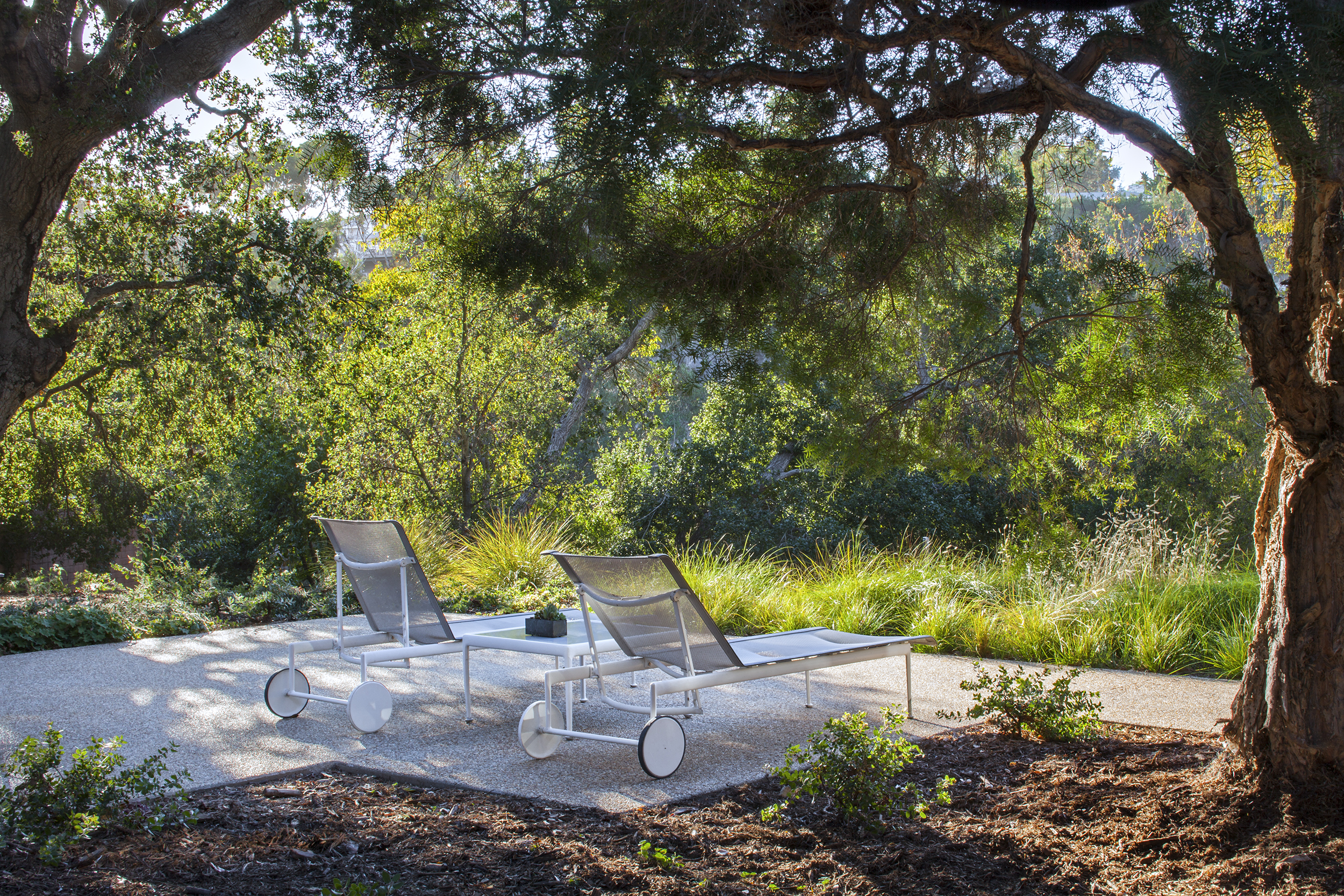 relaxing patio for two modern outdoor furniture in oak tree clearing - Rustic Canyon - Los Angeles garden design by Campion Walker Landscapes.jpg