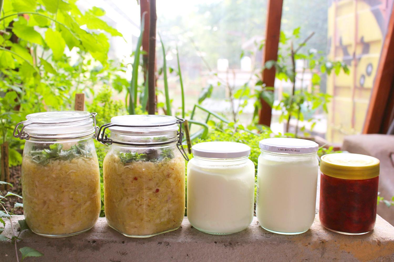 Homemade kraut, yogurt and jam in the greenhouse