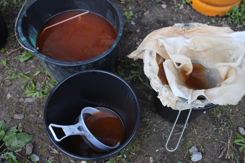 Filtering reclaimed vegetable oil