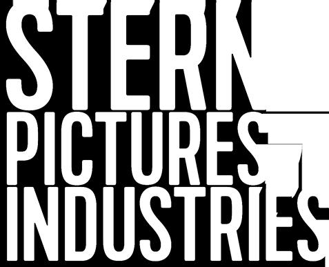stern_logo.png