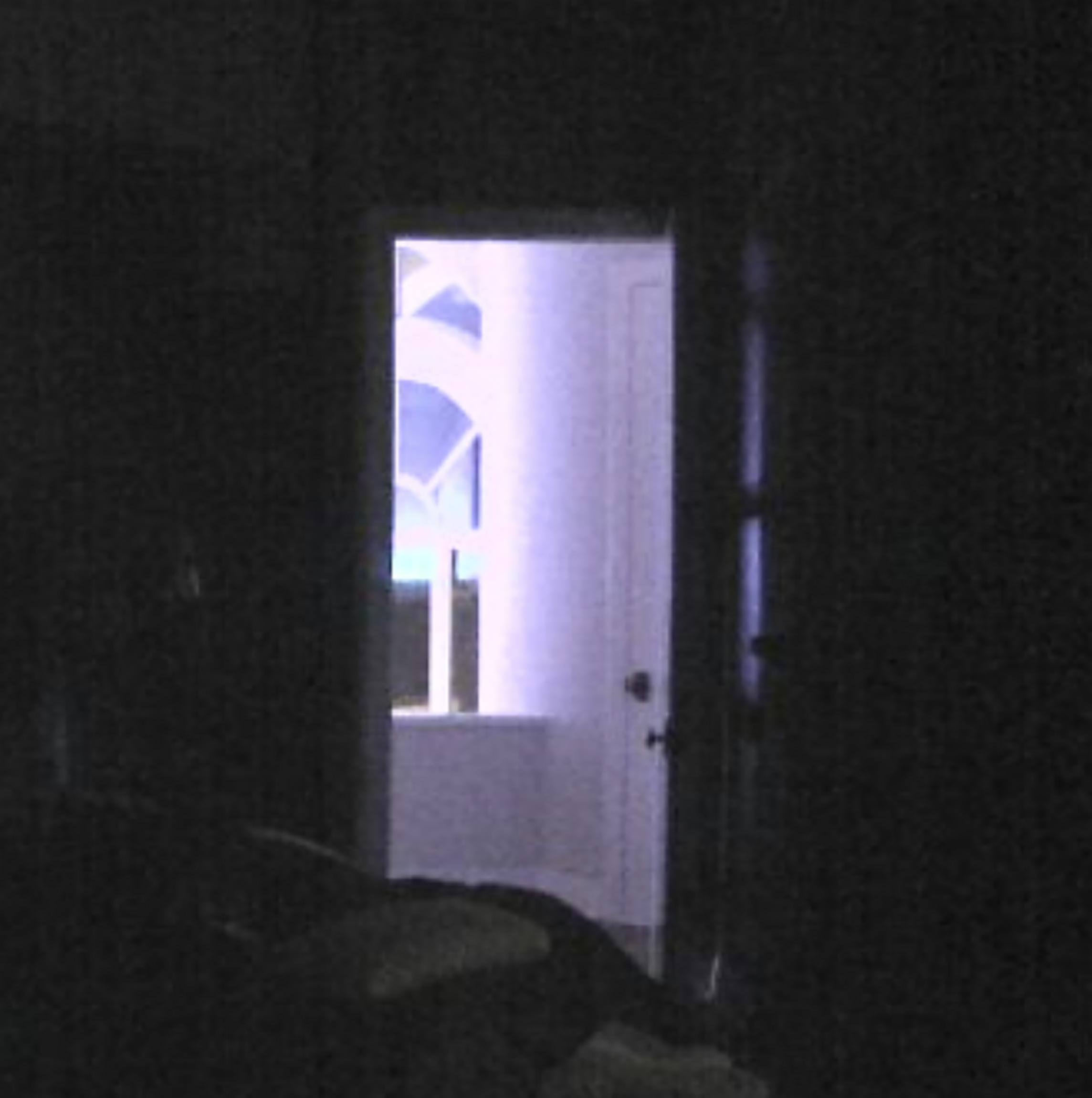 02_BedroominTexasDetailShot_2017_InkjetPrintonVinyl_DimensionsVariable_ClearedforMedia.jpg