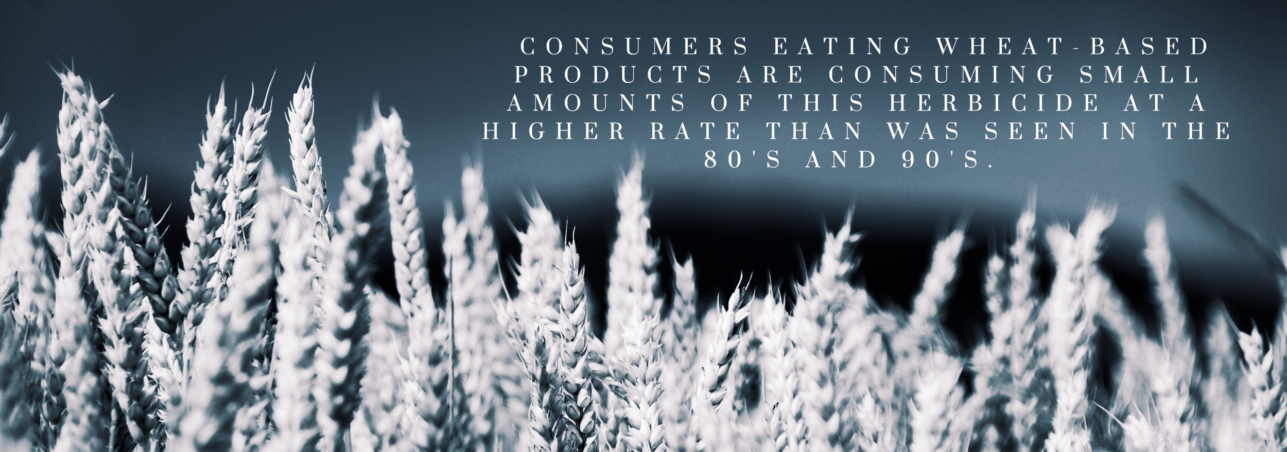 What this means for us is more chemical residue on the products that are sold and used to make the food we eat everyday. Consumers eating wheat-based products are consuming small amounts of this herbicide at a highe.png