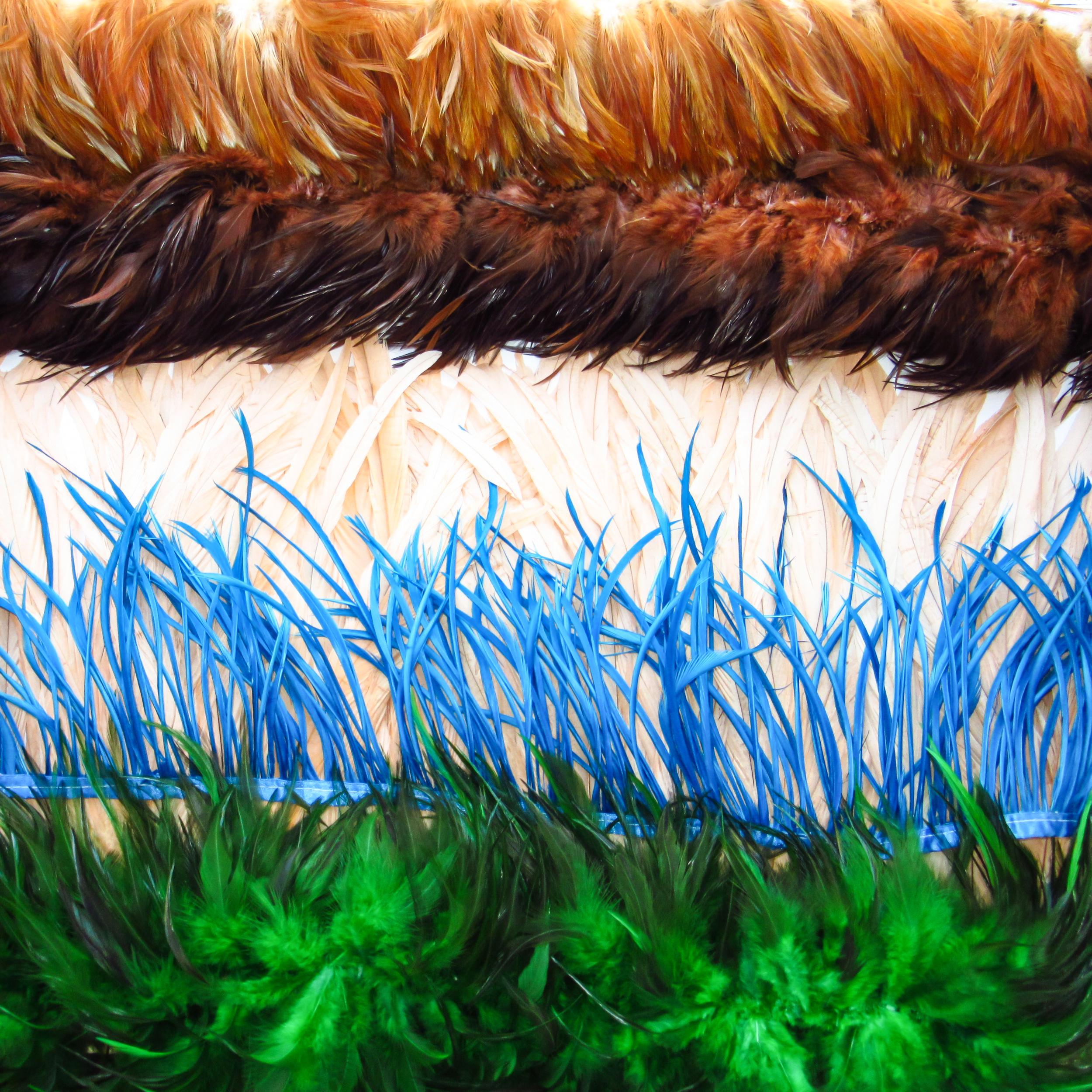 Franges de plumes