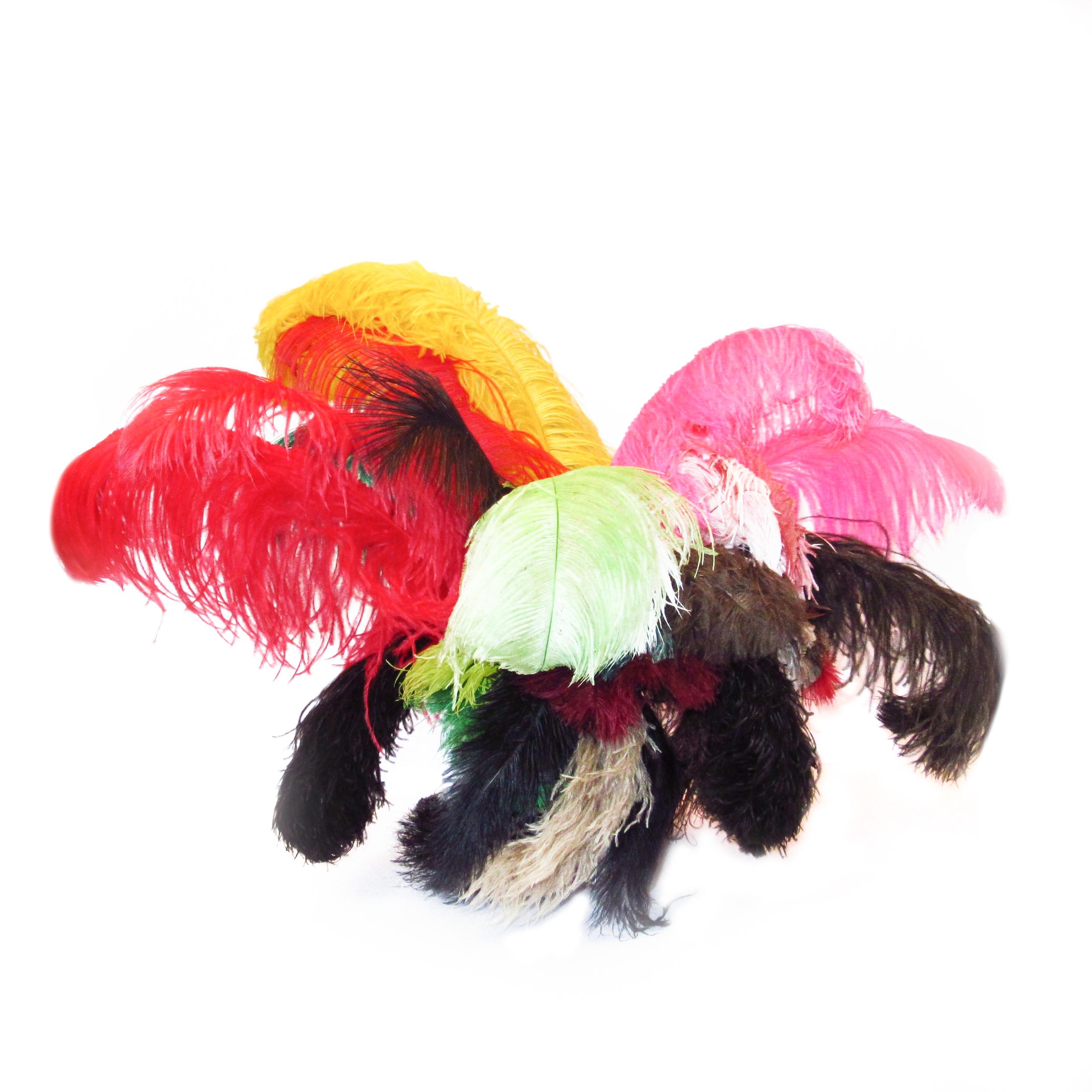 Plumes d'autruches multicolores