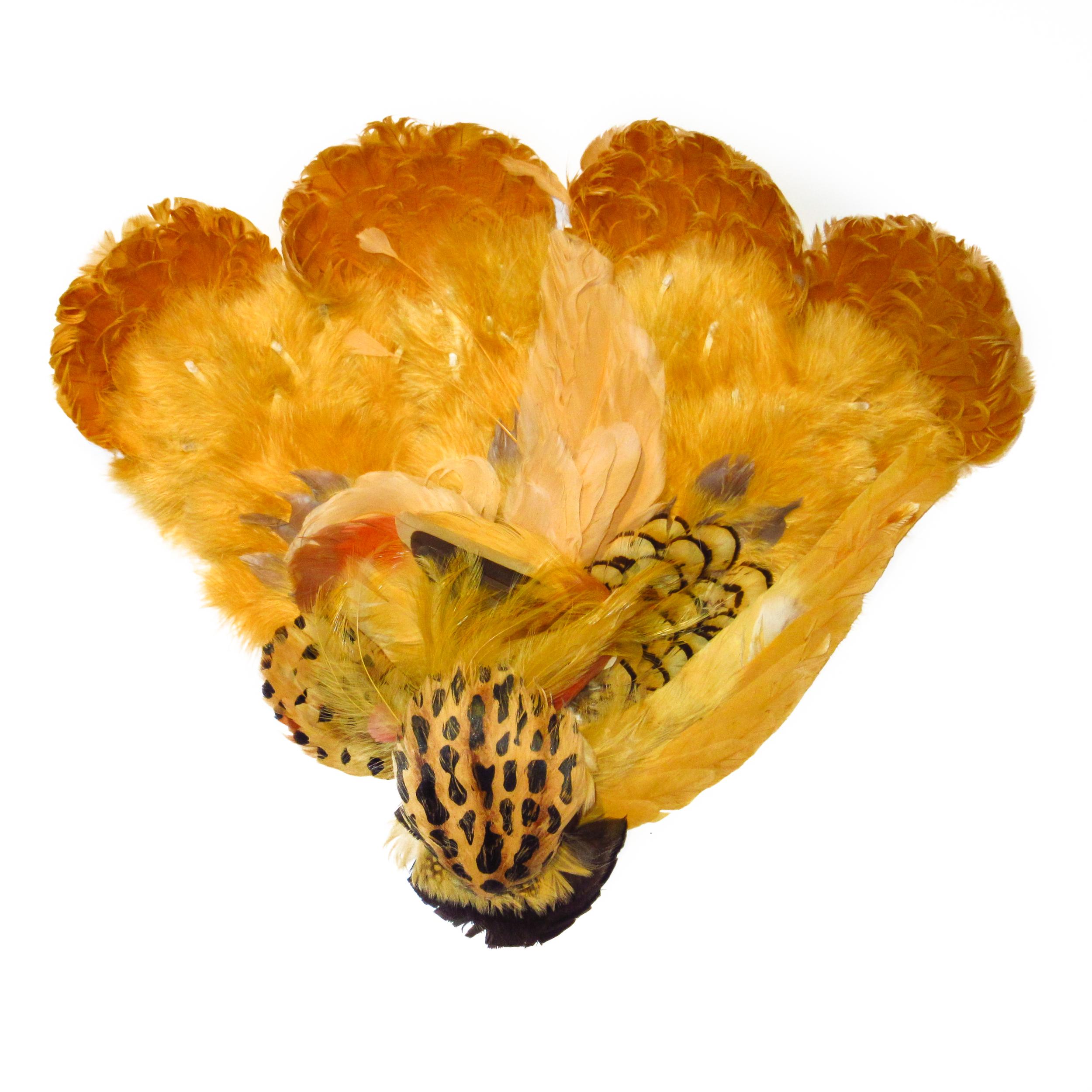 Yellow orange feathers