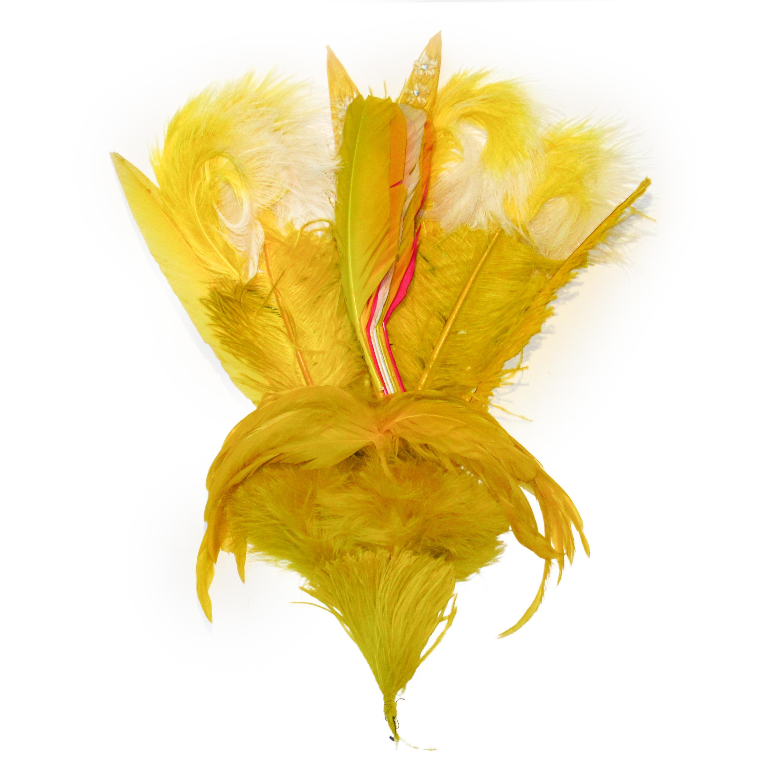 Green lemon feathers