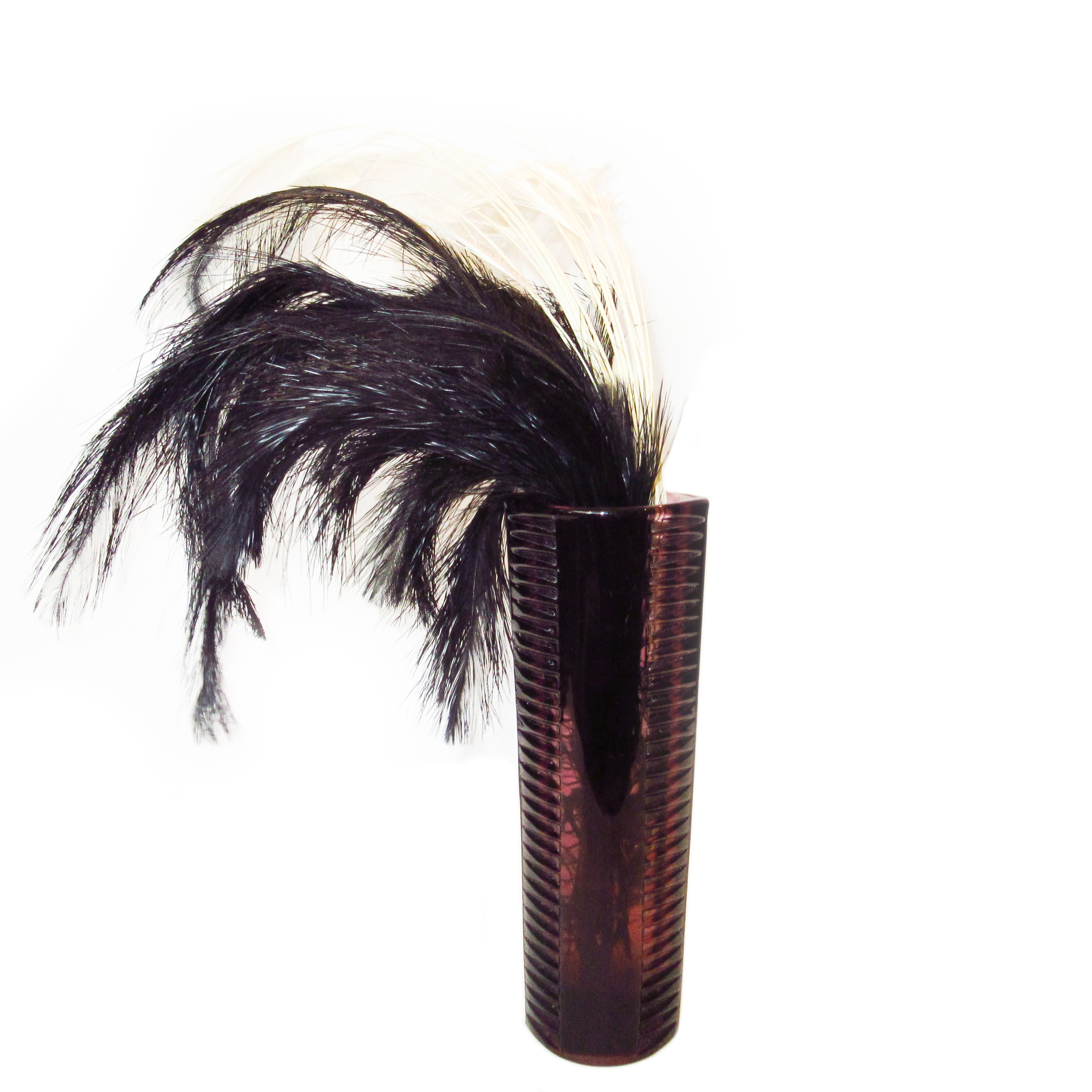 Soft black and white ostrich feathers