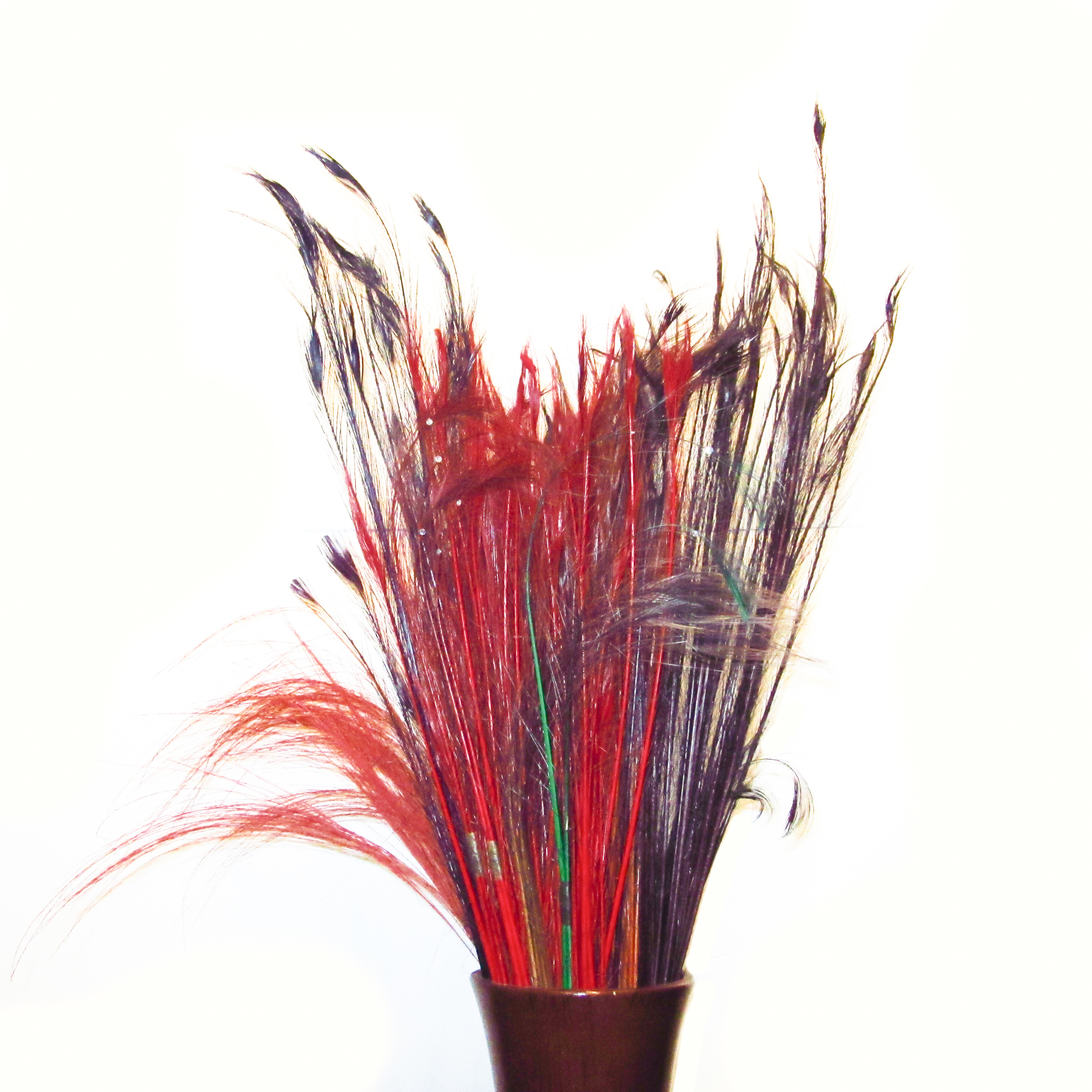 Dyed peacock feathers