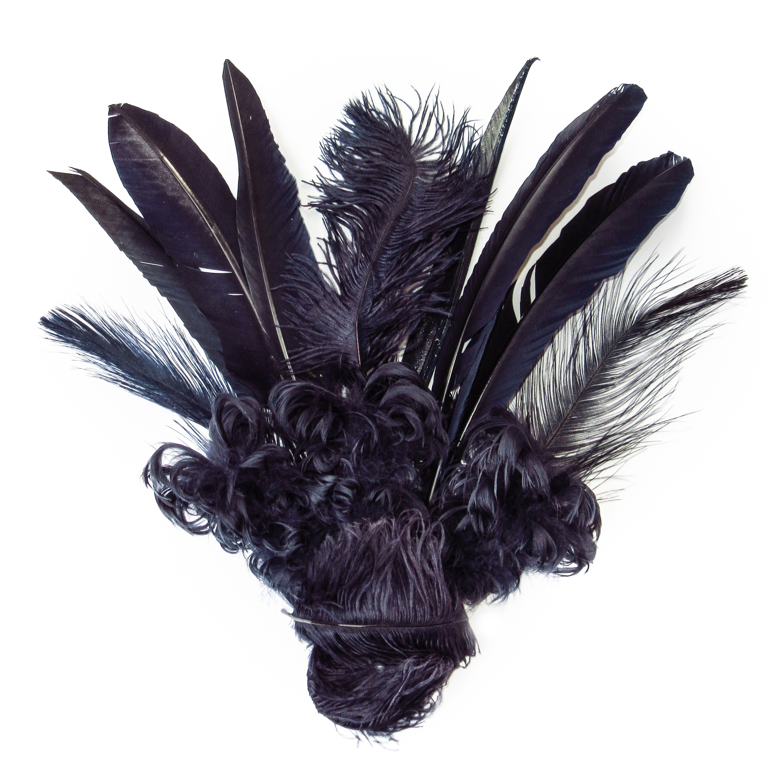 Navy blue feathers