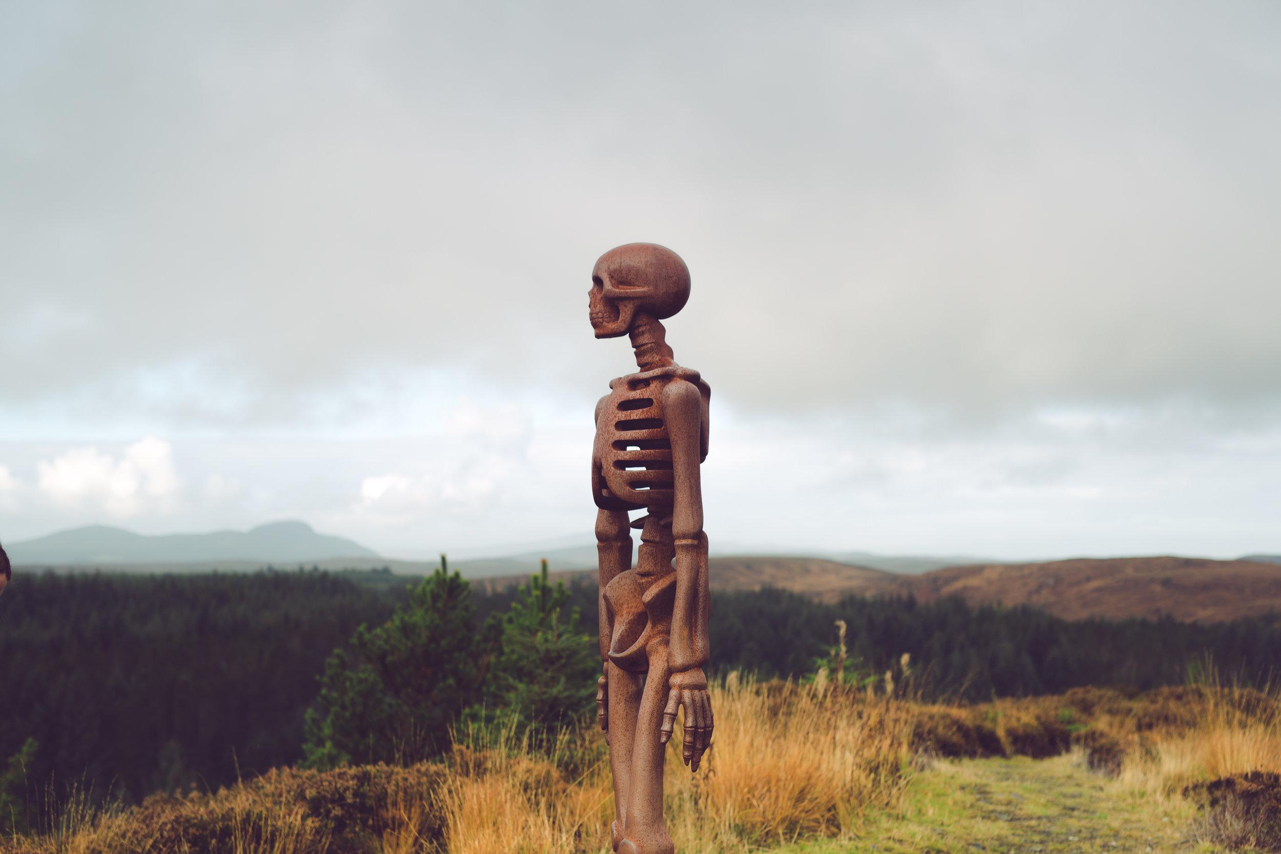 Fraser_Taylor_Scotland-12.jpg