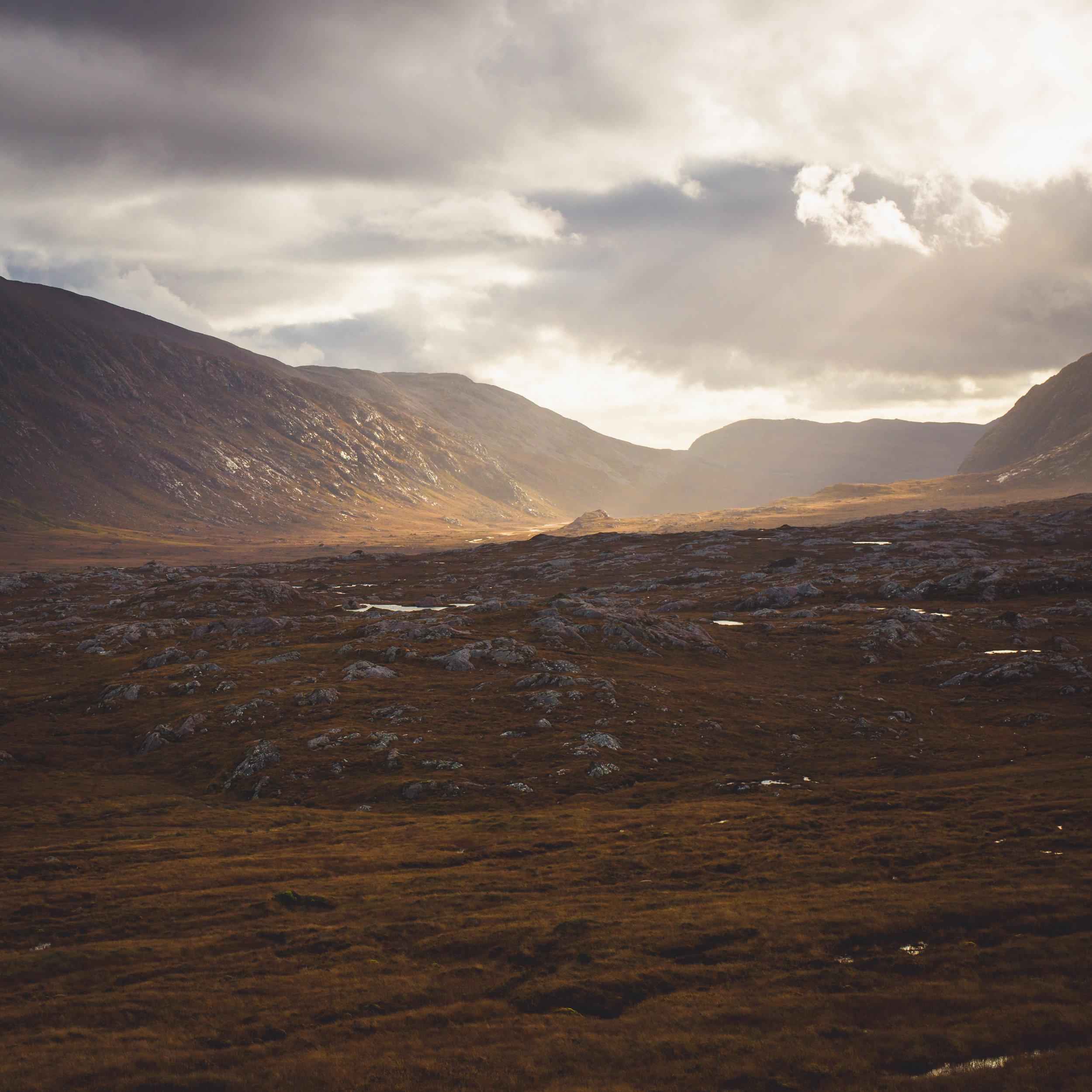 Fraser_Taylor_Scotland-55.jpg