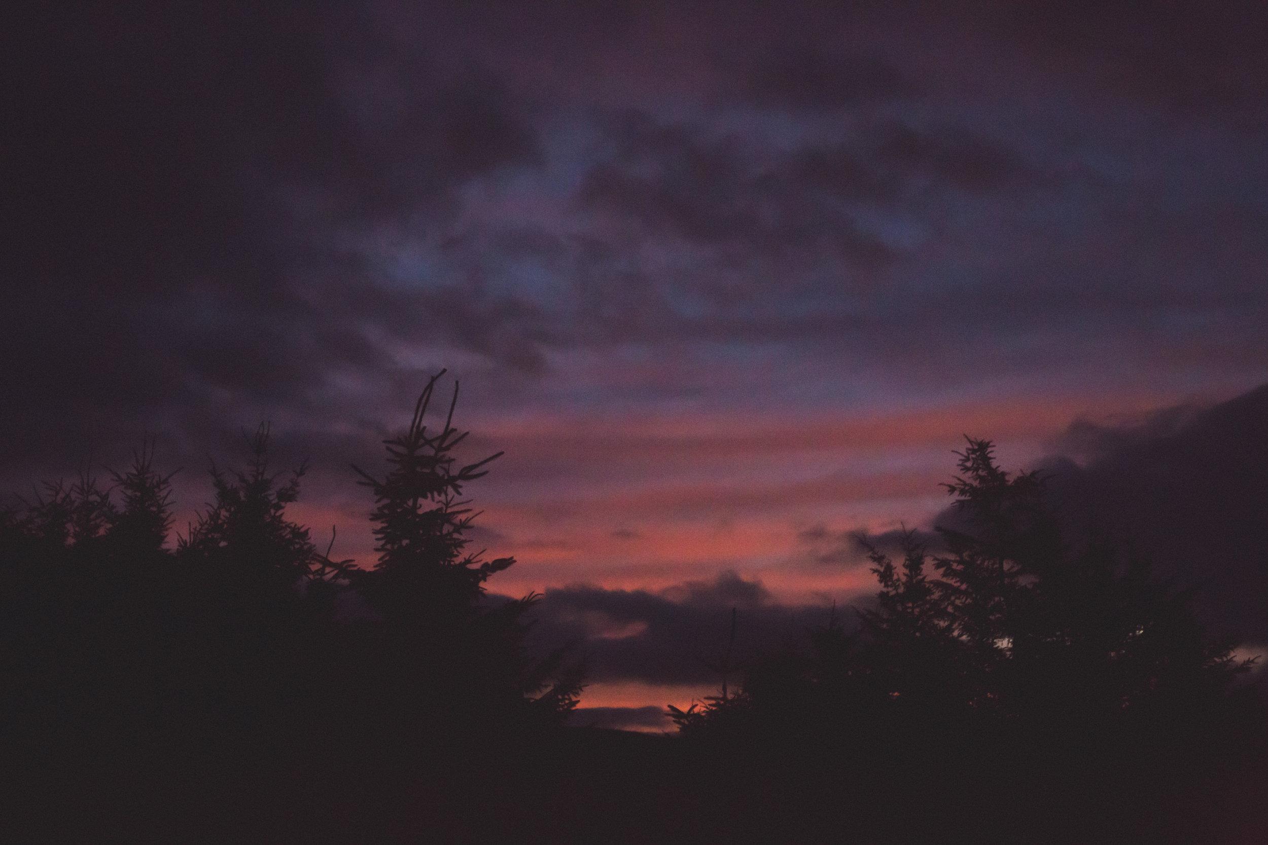 Fraser_Taylor_Scotland-68.jpg