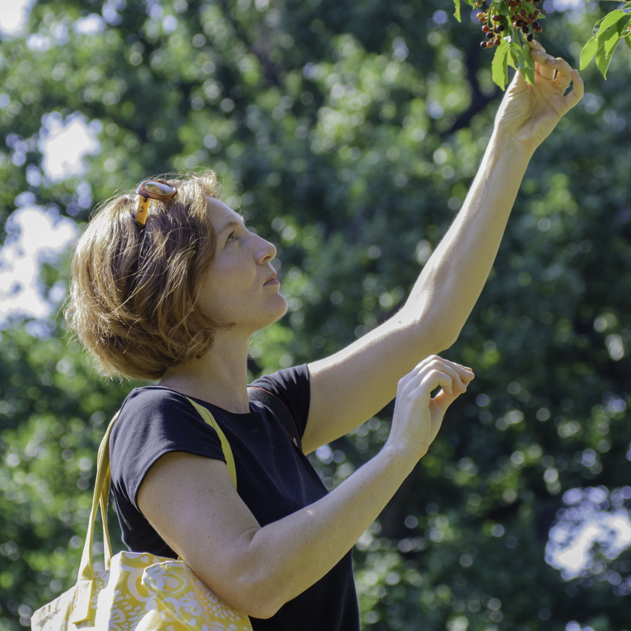 Regional Character Exploring Native Flora With Marie Viljoen