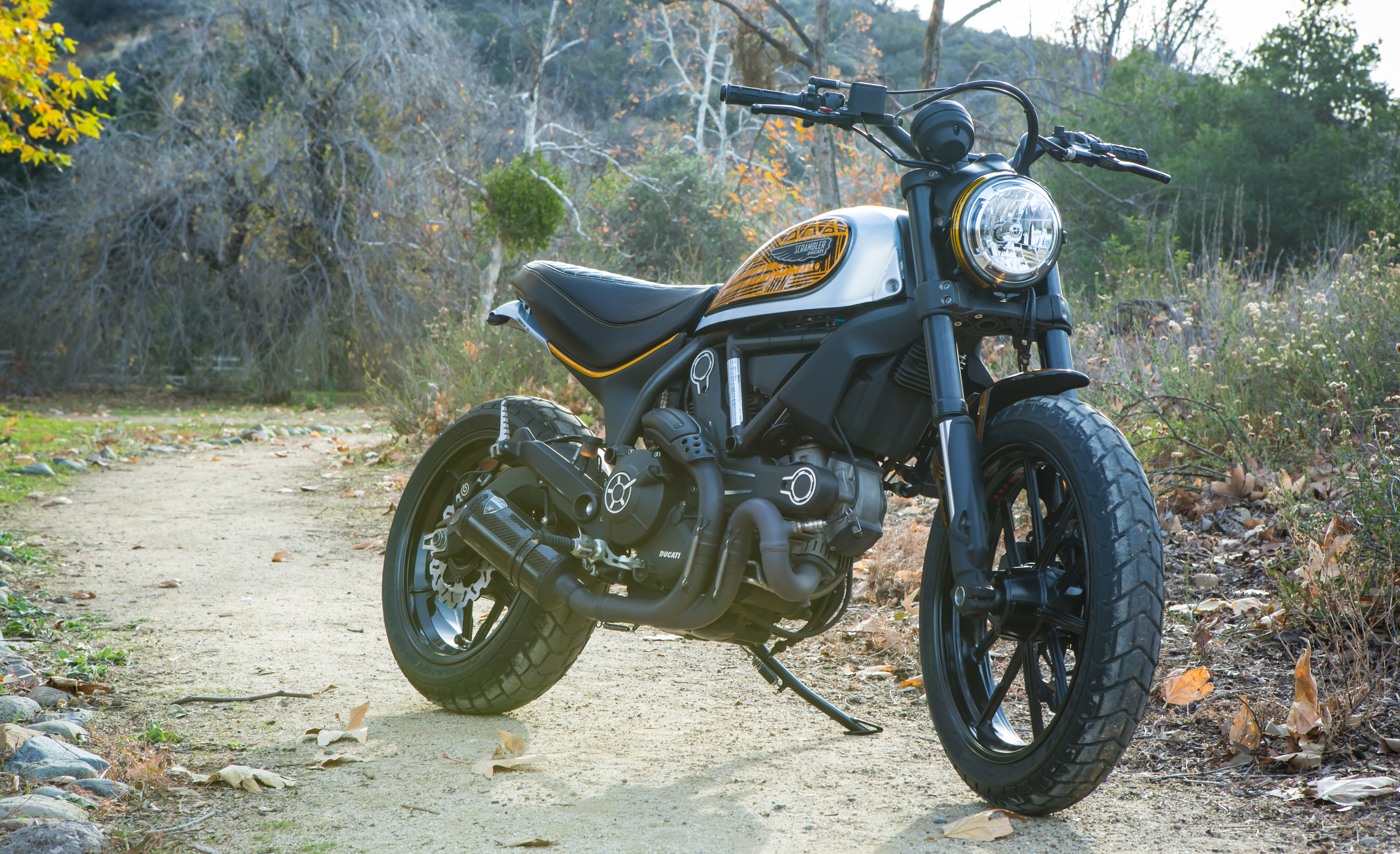 Anaheim Rod and Custom Ducati Scrambler Custom Paint.jpg