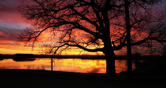 sunsets-271814_640.jpg