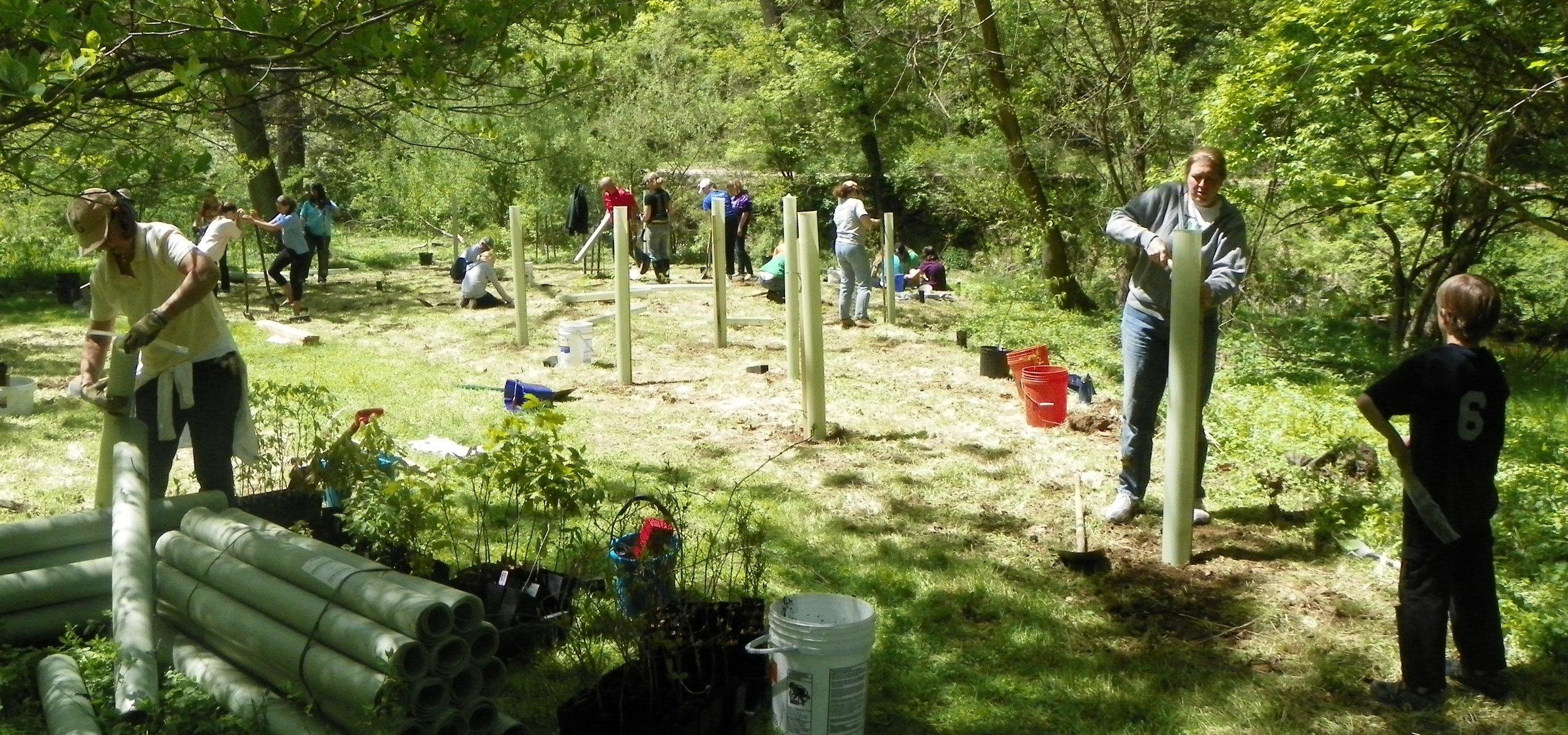 Miller Girl Scout Planting 002.jpg