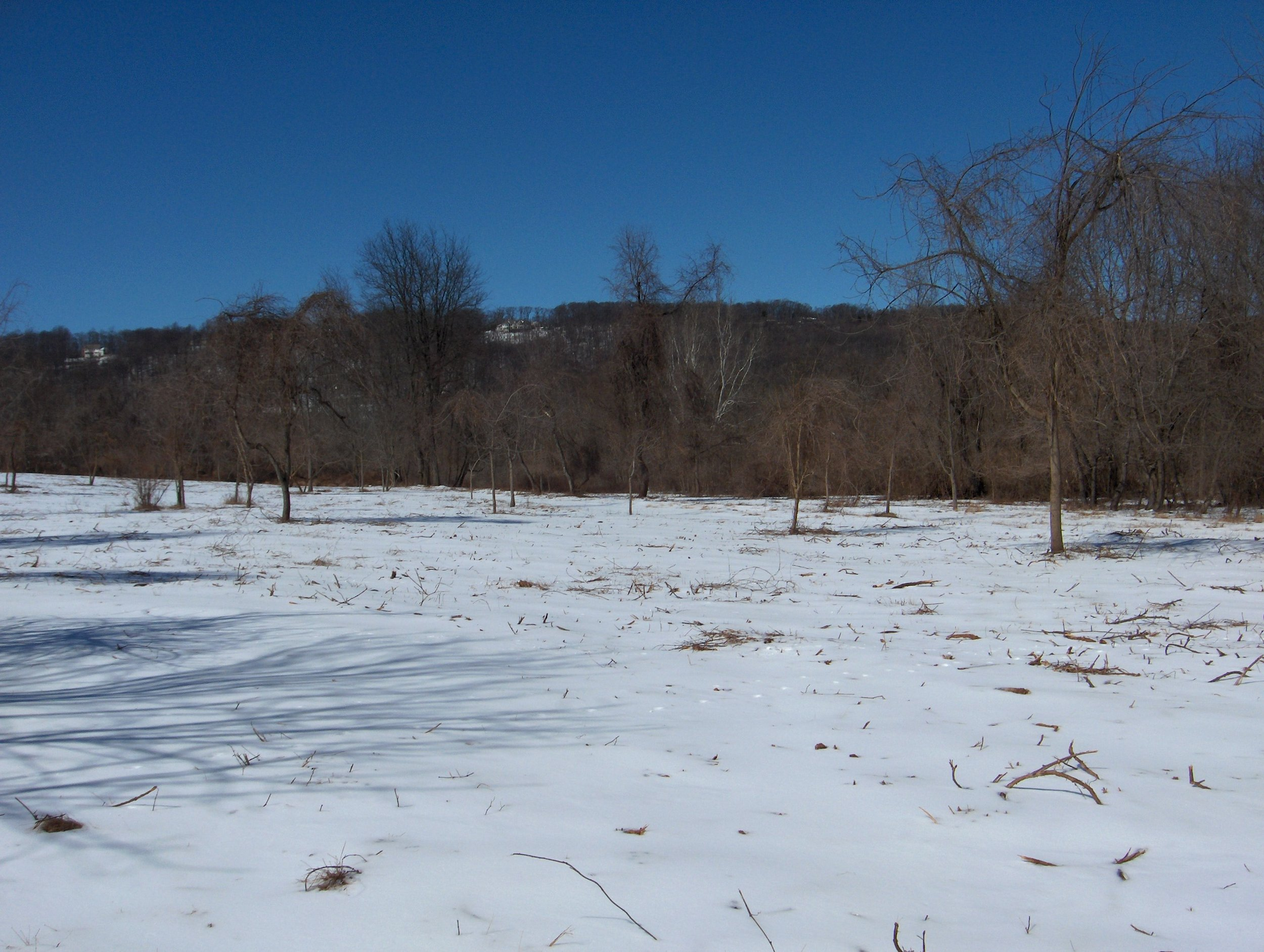 Valley Creek Mar 071.JPG