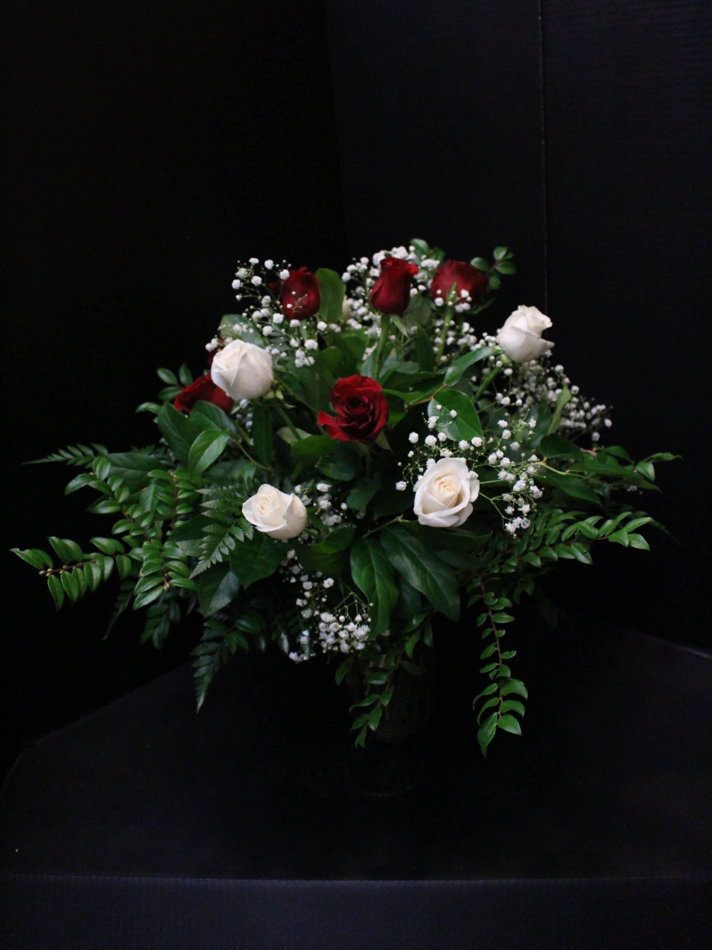 Red & White Roses (TVB-68)