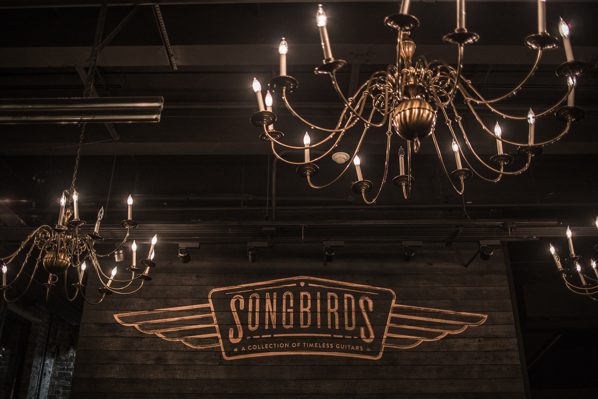 Songbirds-15.jpg