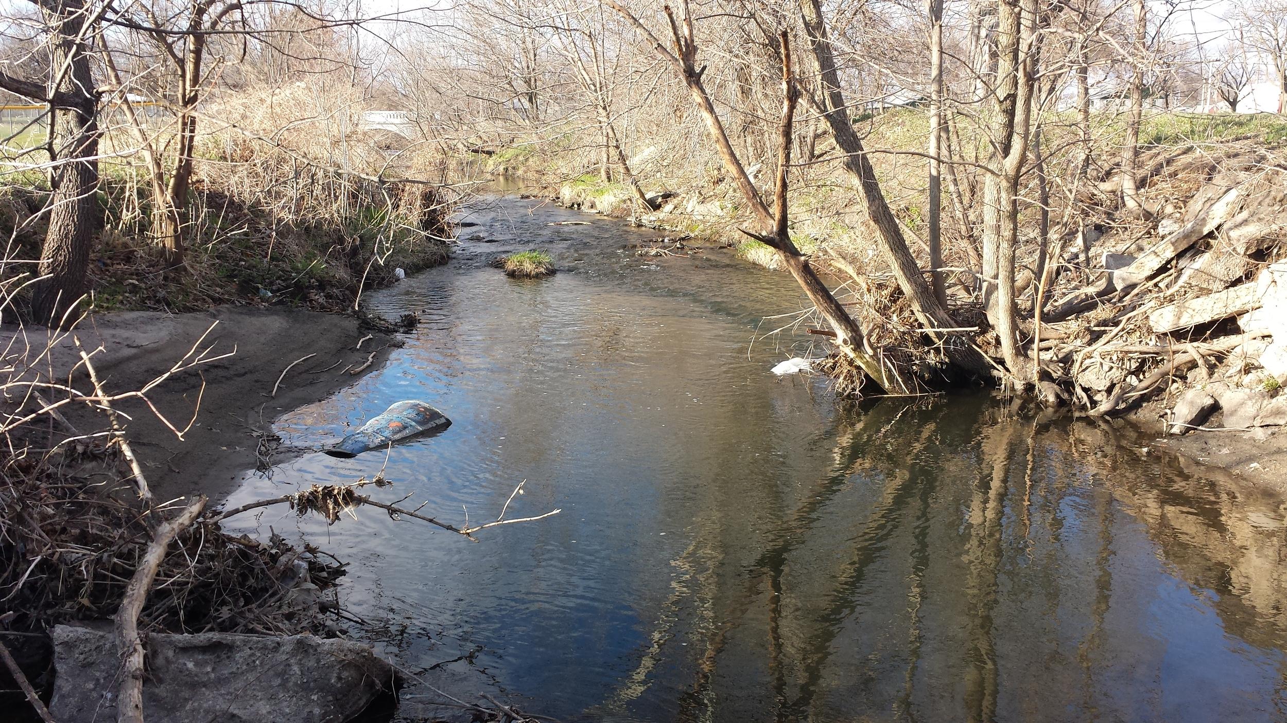 A likely creek chub hole