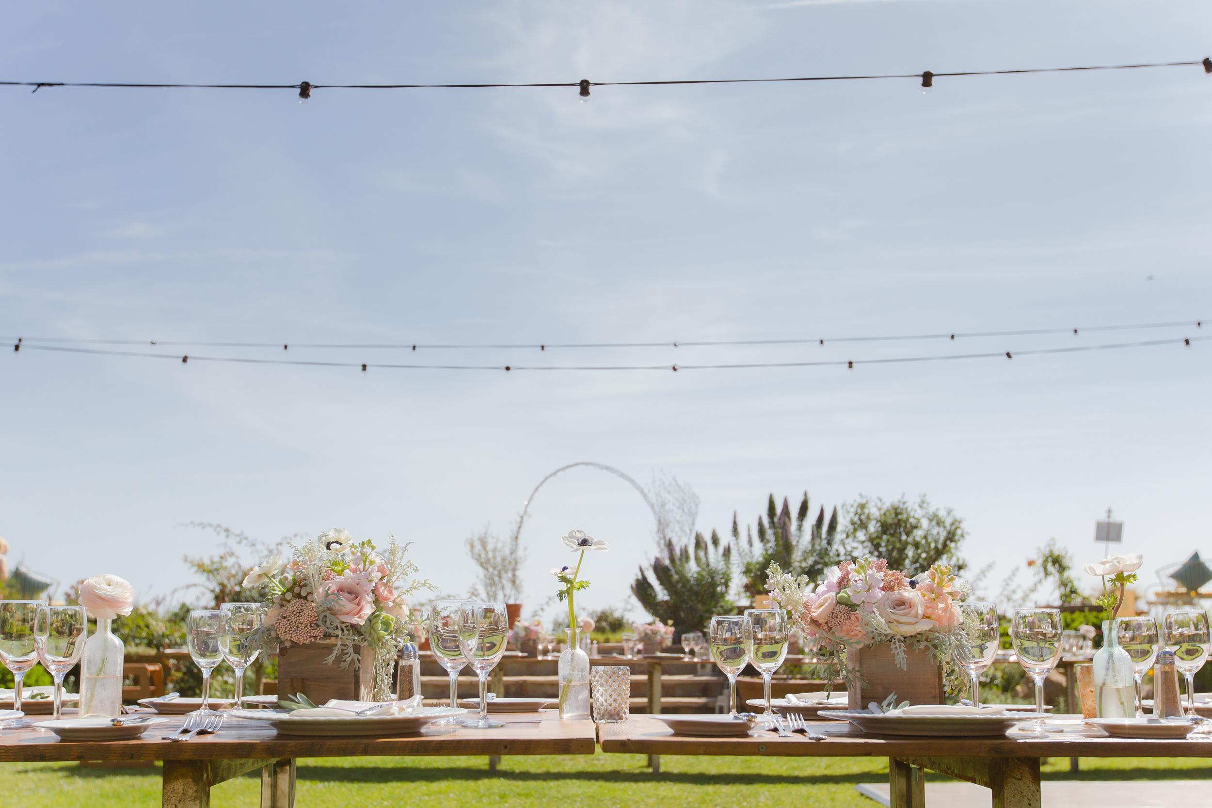 Wedding-Annie&Dan0291.jpg