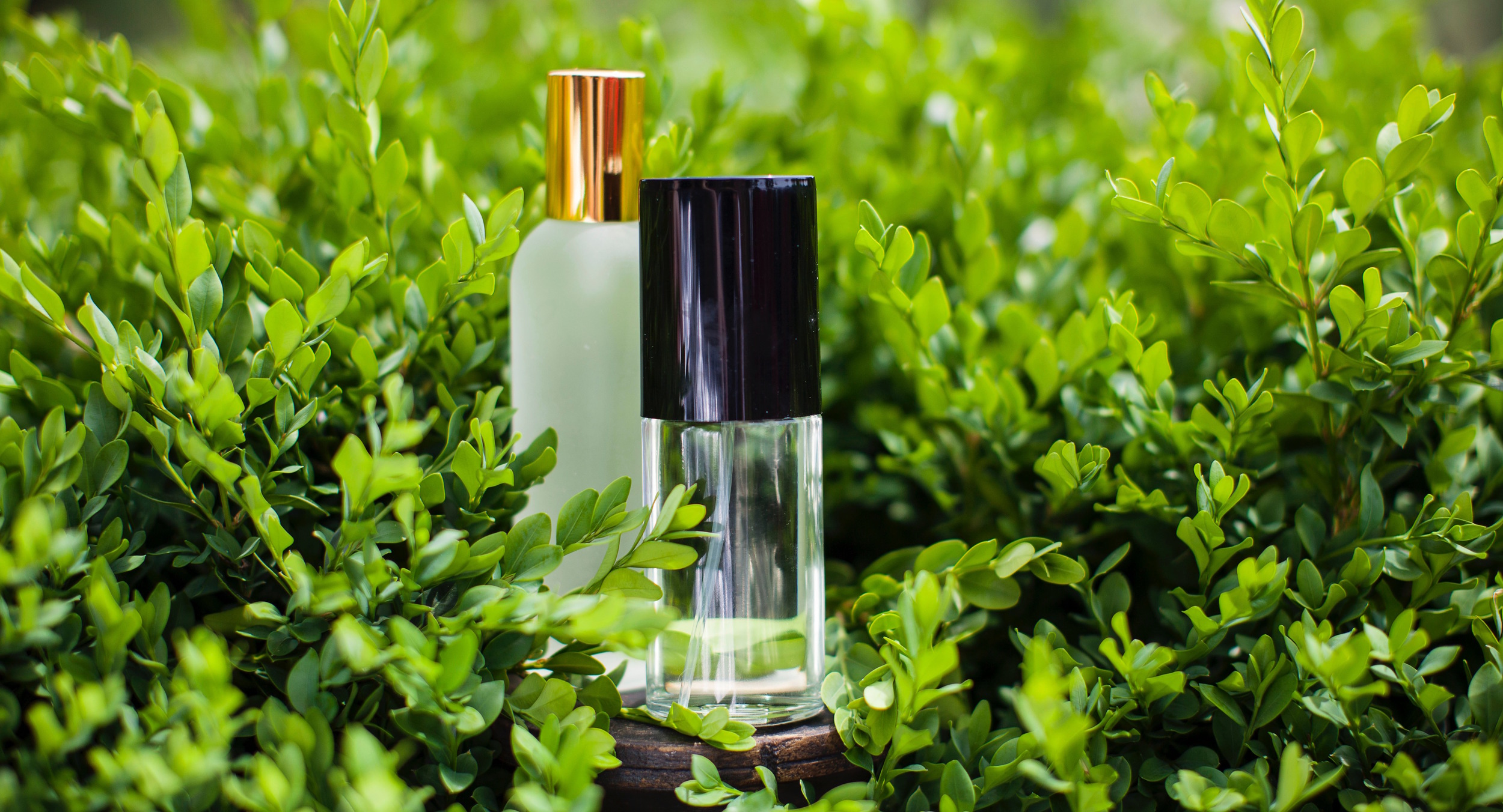 Sargent_perfume_-5664.jpg