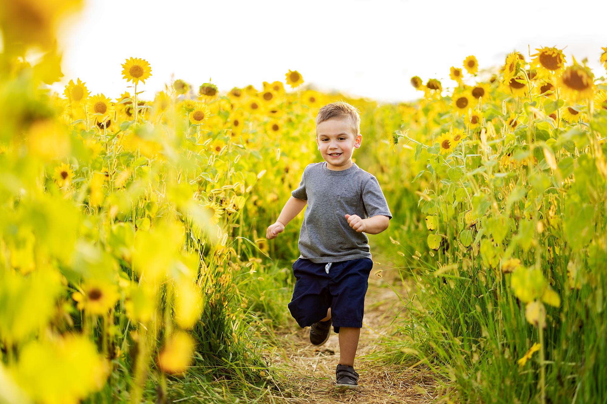 Cottell-Park-Sunflower-Field-Family-Photography-6.jpg