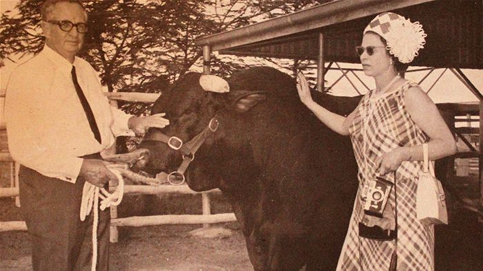 The Queen patting a bull with Sir James