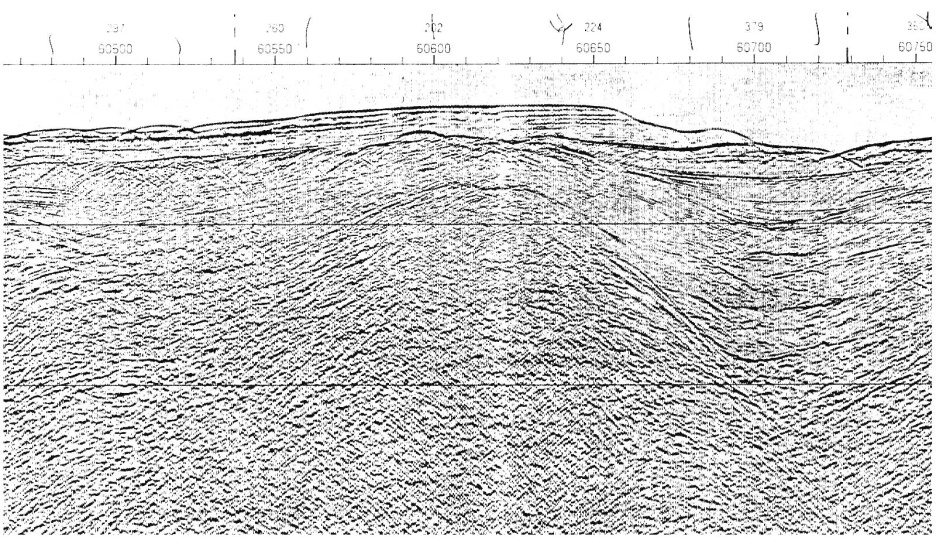 Seismic Line 78-370: Saavedra-Moalboal Prospect