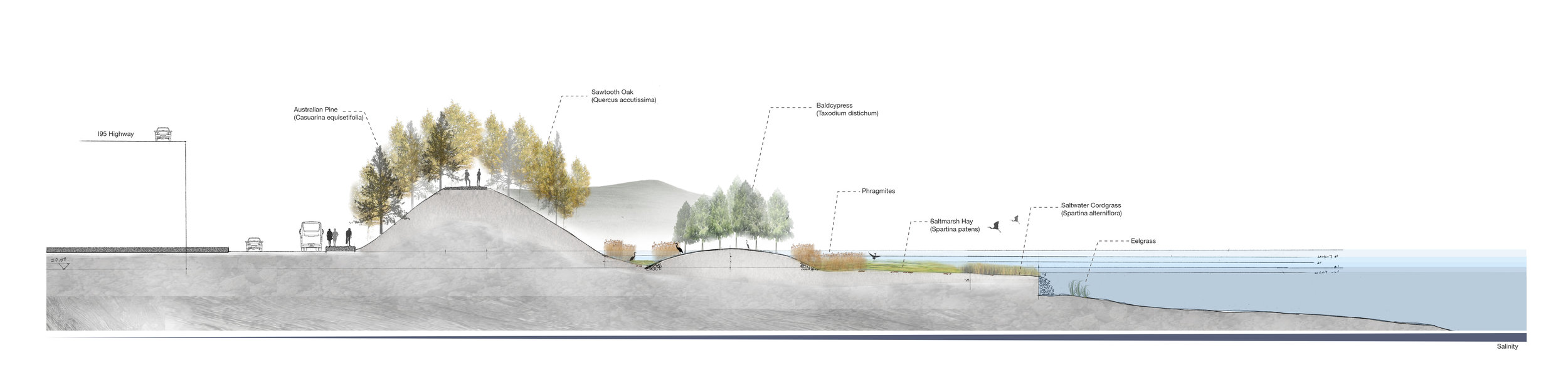 Long Section of the Proposal Site.