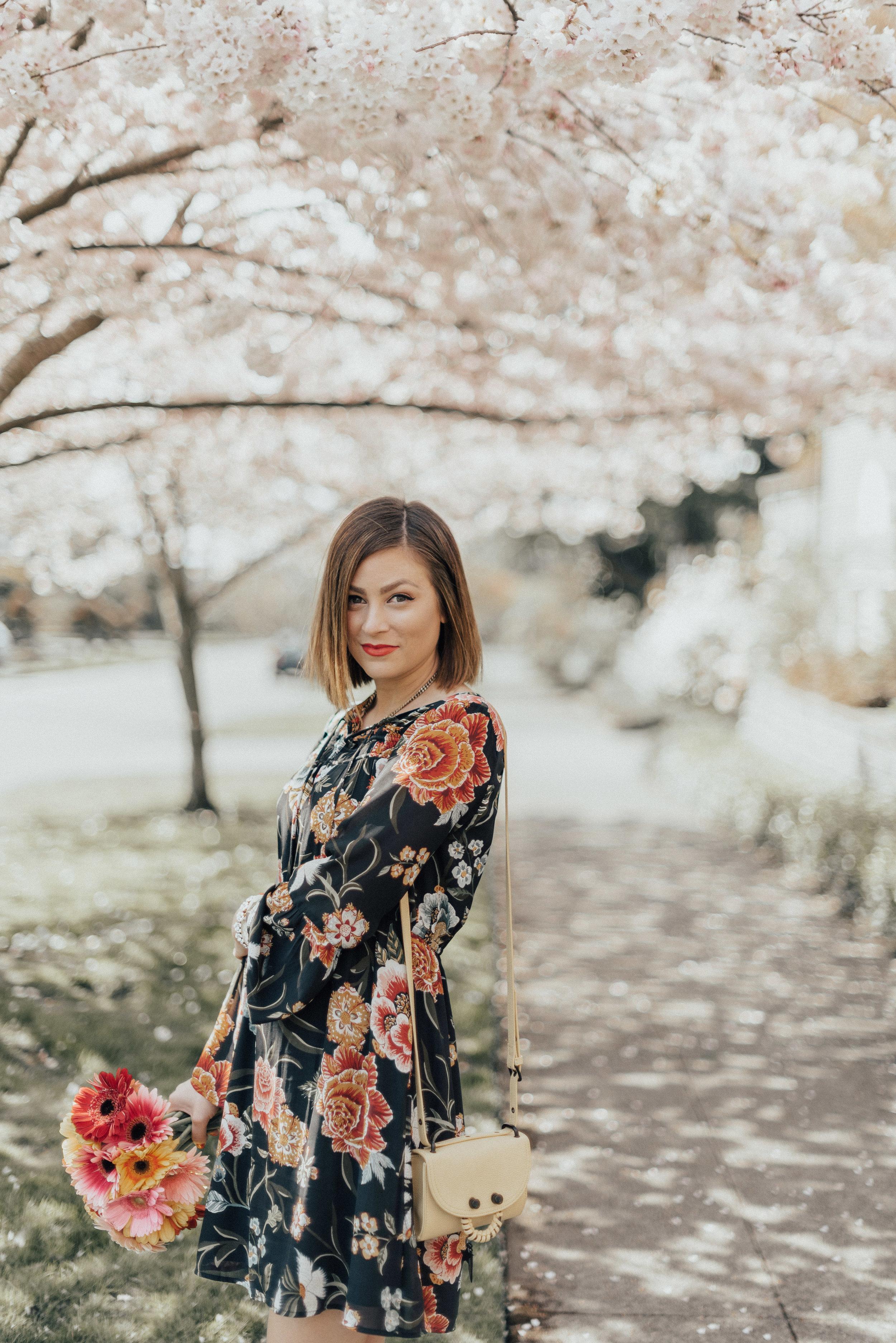 CherryBlossoms-12.jpg