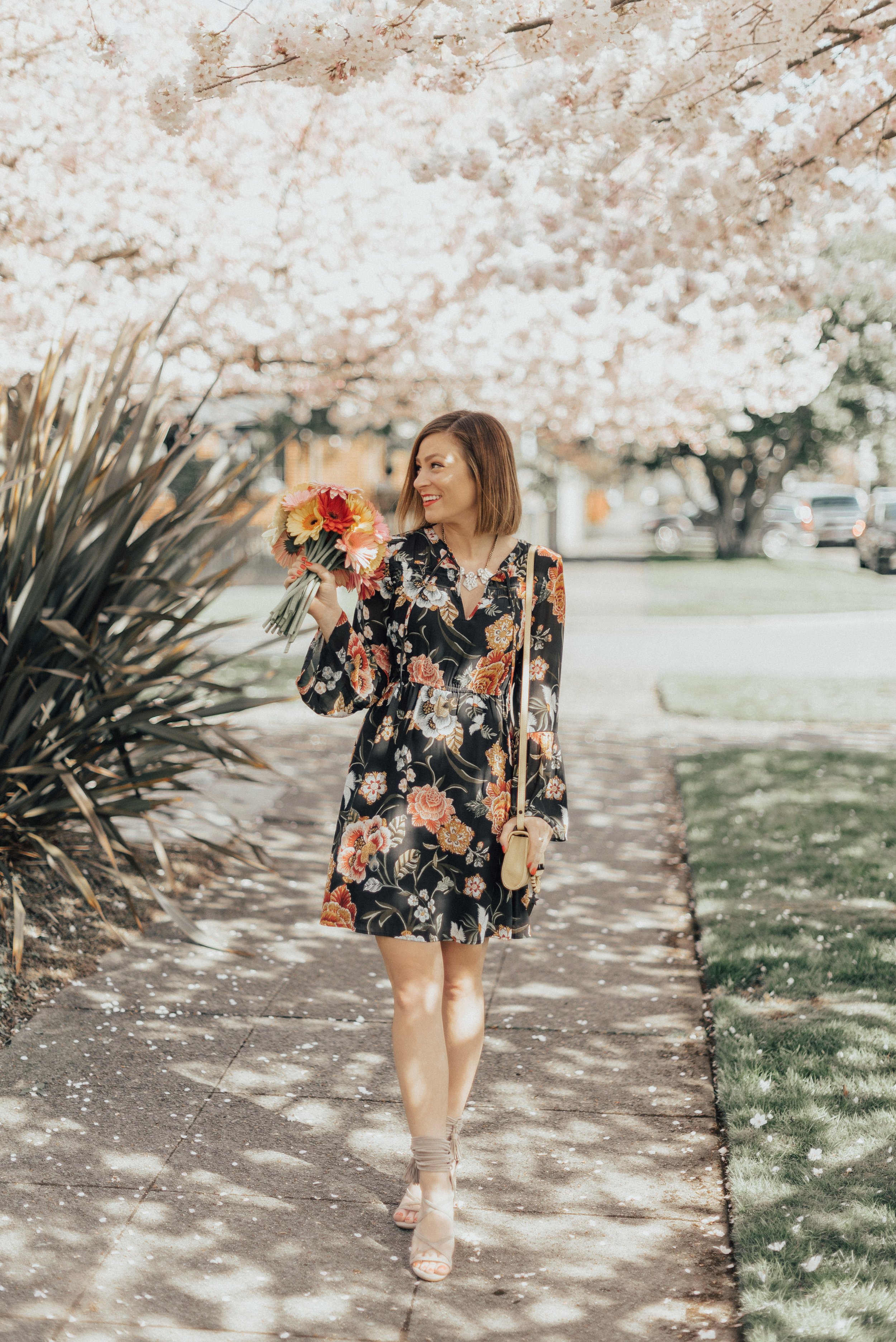 CherryBlossoms-13.jpg