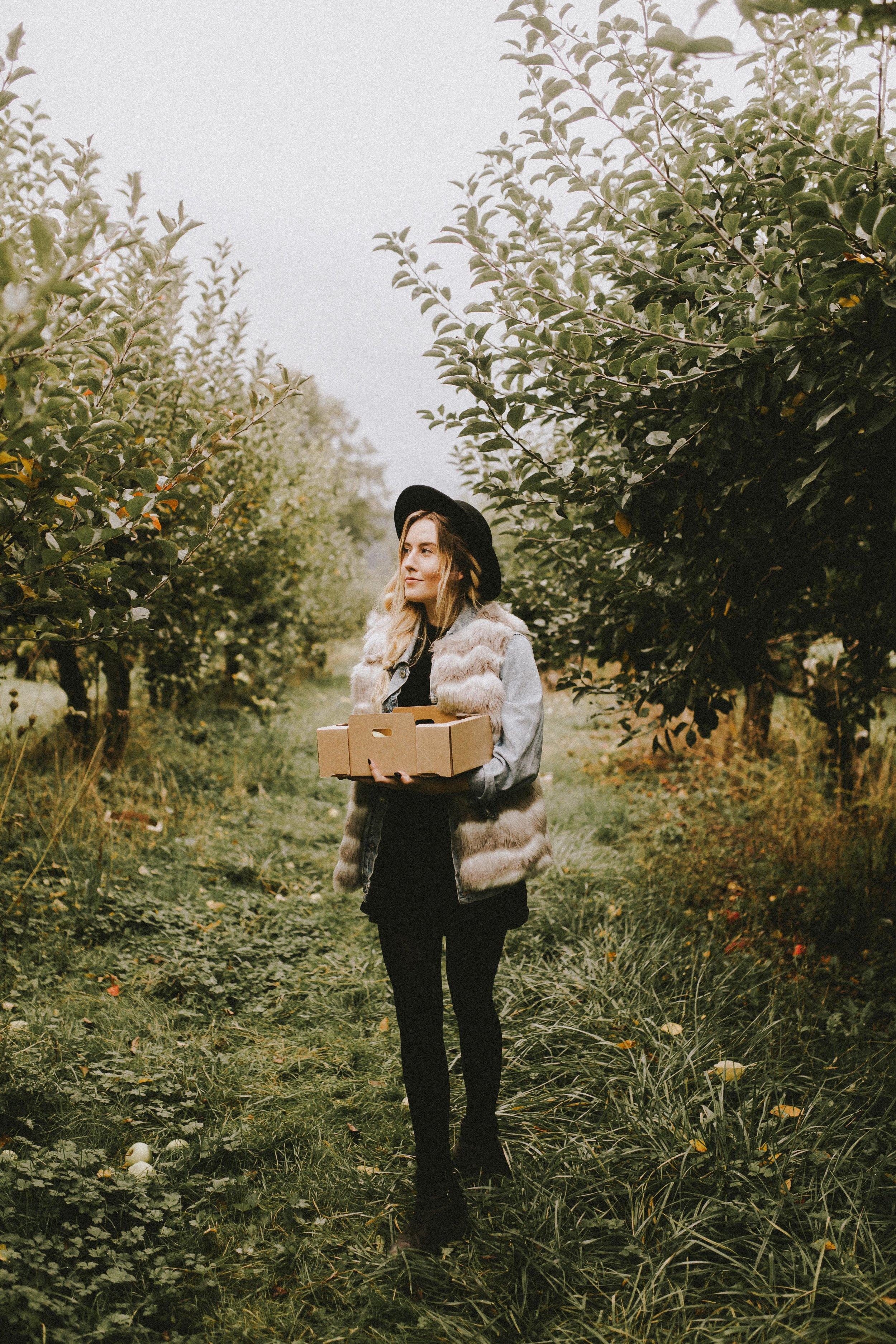 samlandreth-apple-4.jpg