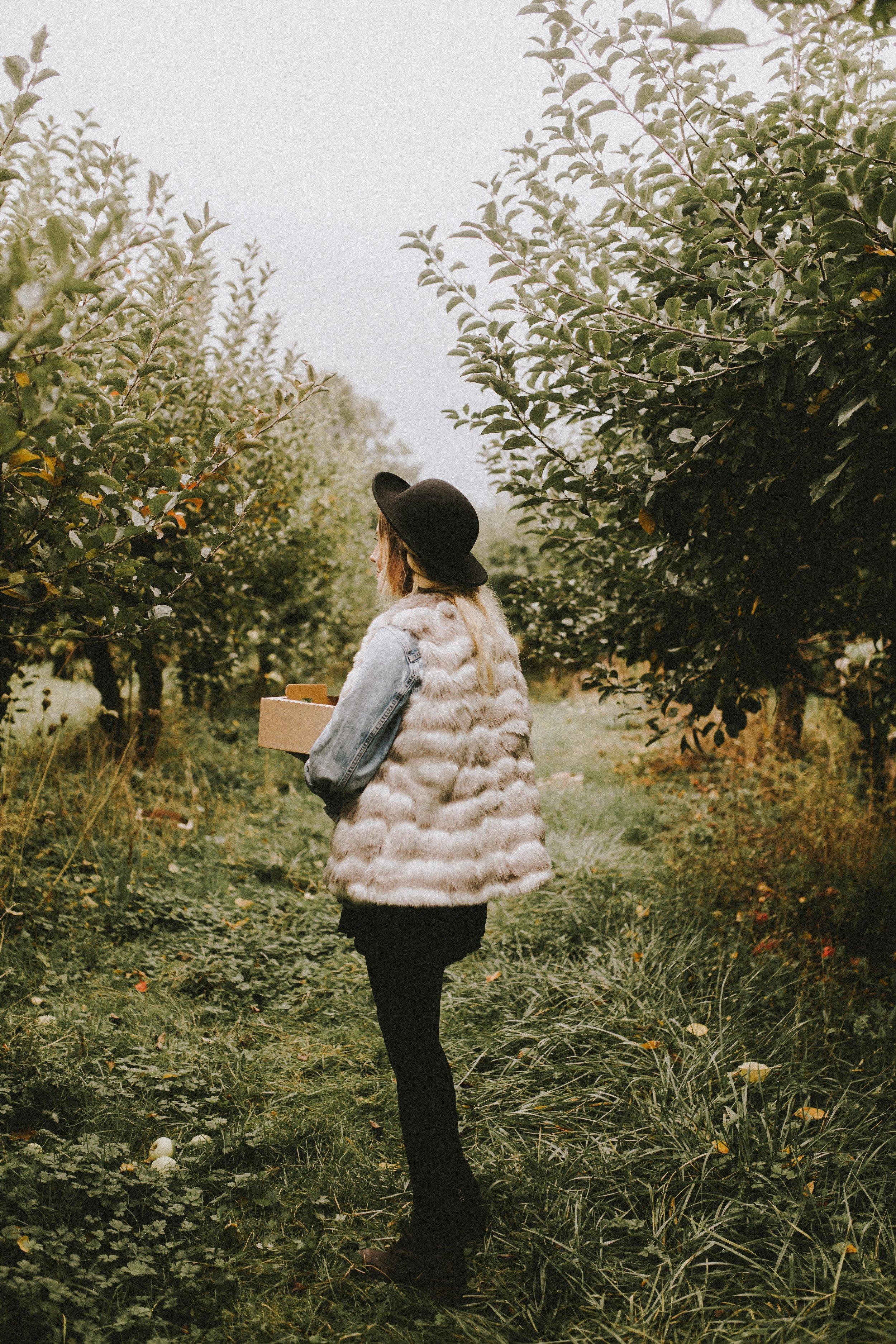 samlandreth-apple-5.jpg