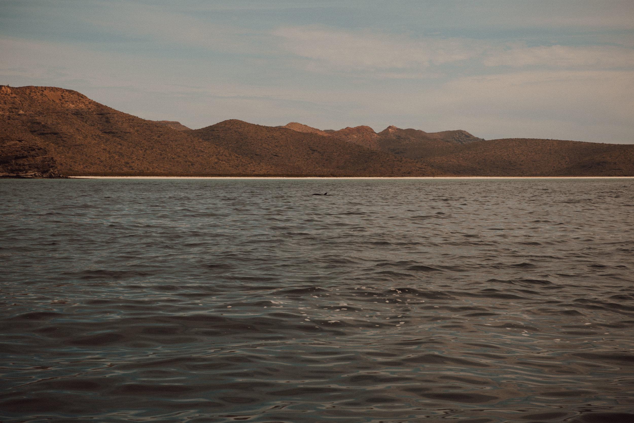 samlandreth-ocean