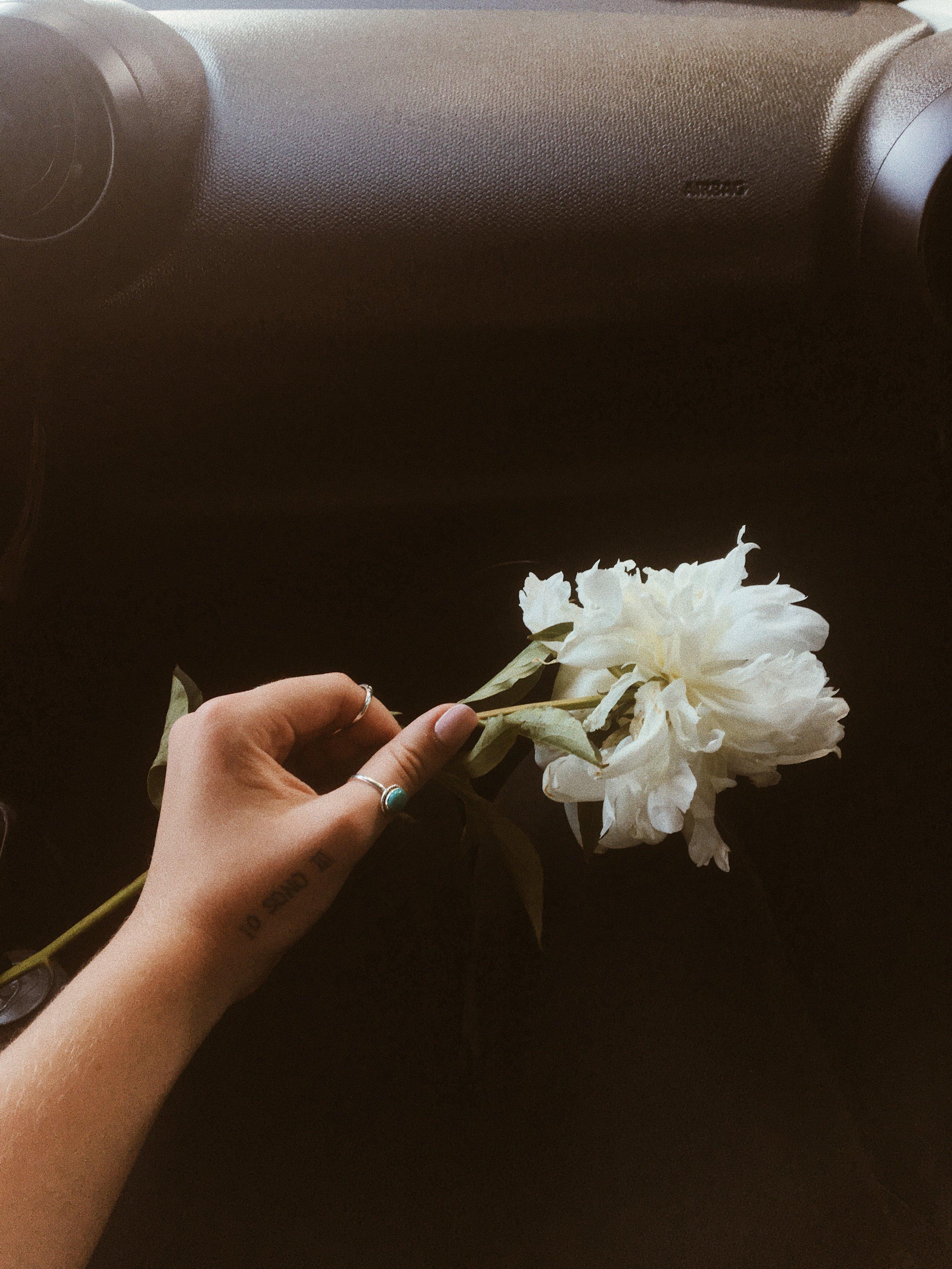 samlandreth-flowers