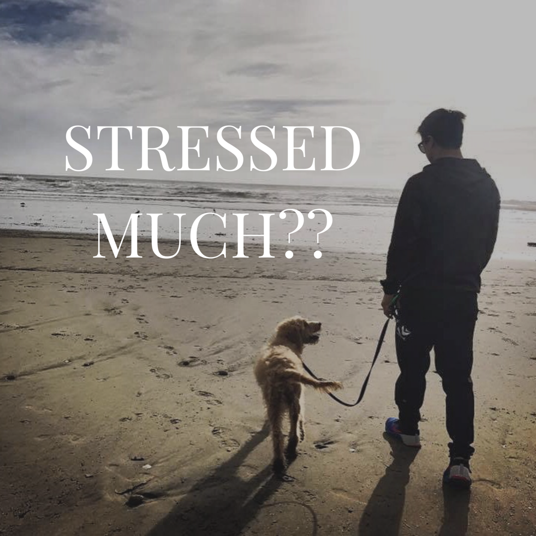 Stress management in business