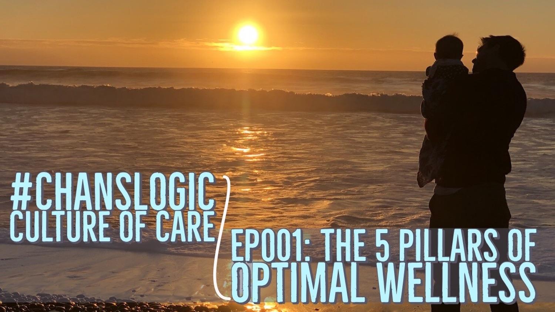 5 Pillars of Optimal Wellness