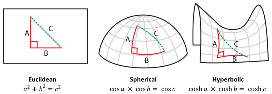 Non Euclidean Dr Mark Liu