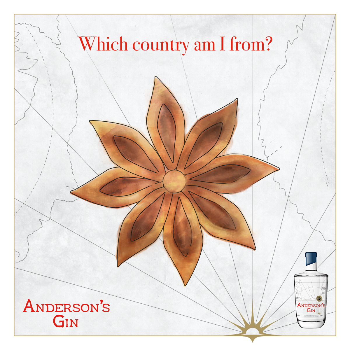 Star Anise.png