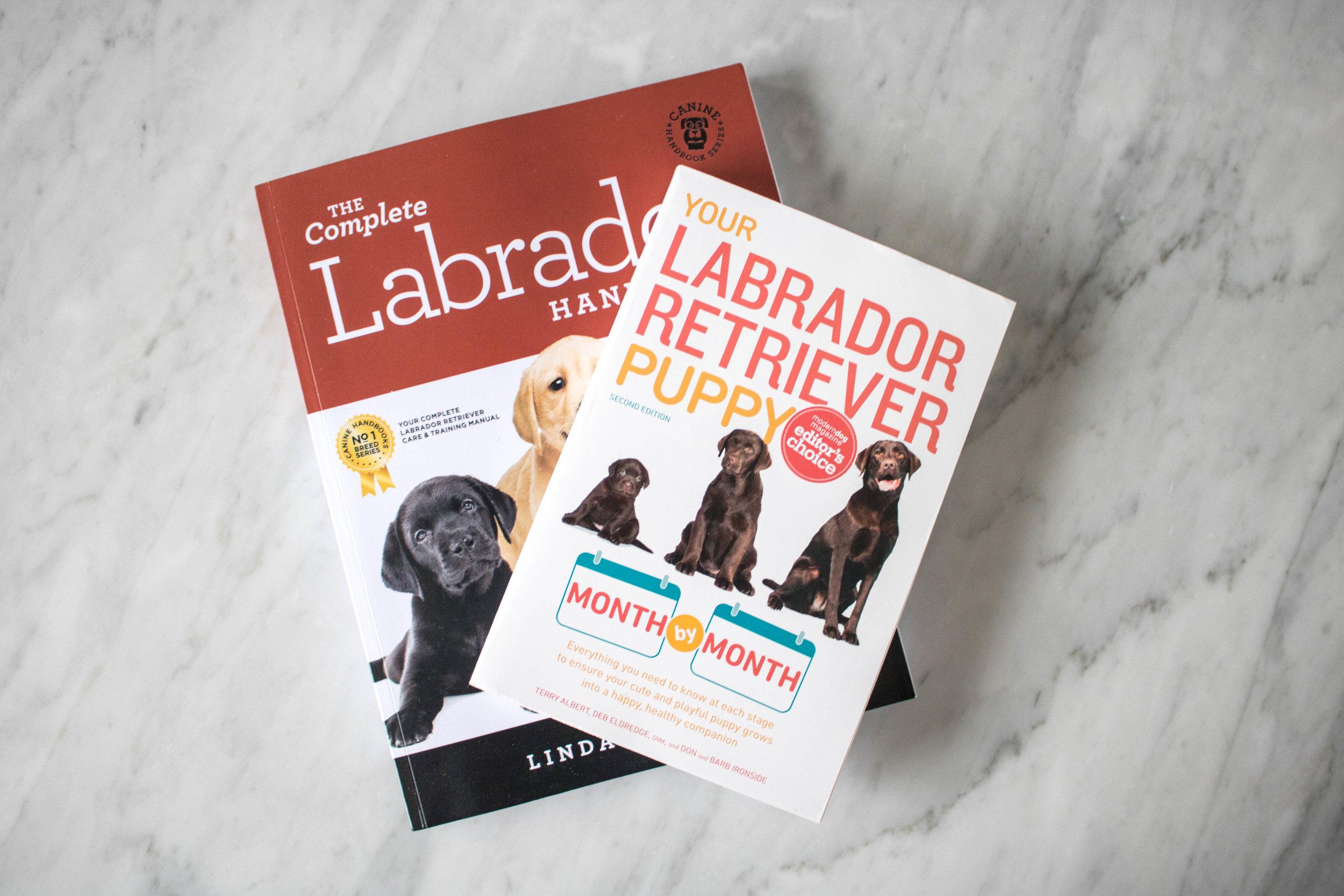 Labrador books