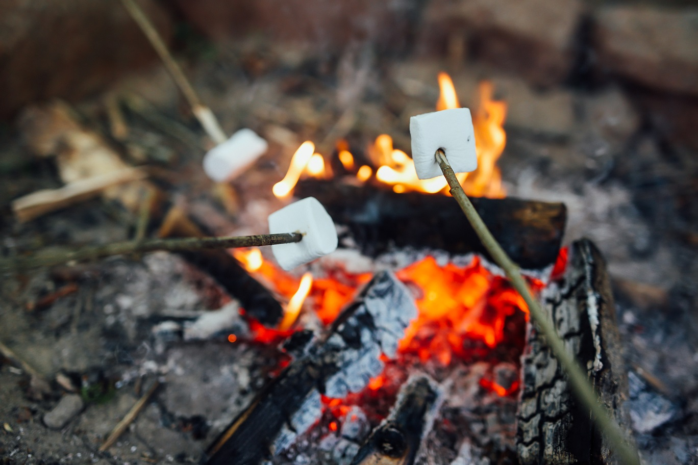 Forest-School-marshmallows-over-fire.jpg