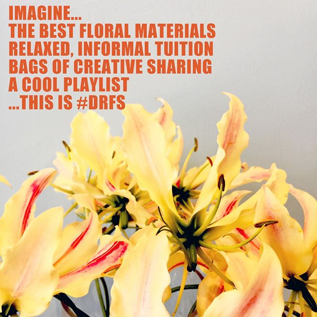 • The best floral and botanical materials ⠀⠀⠀⠀⠀⠀⠀⠀⠀ • Relaxed, informal tuition ⠀⠀⠀⠀⠀⠀⠀⠀⠀ • A shared creative vibe⠀⠀⠀⠀⠀⠀⠀⠀⠀ • A playlist to set the tone⠀⠀⠀⠀⠀⠀⠀⠀⠀ David Ragg Flower School is here to help you break out of the norm and achieve the unexpected.⠀⠀⠀⠀⠀⠀⠀⠀⠀ Calling florists of all experience... unlock your potential, forget the rulebook and wallow in a world of floral creativity.⠀⠀⠀⠀⠀⠀⠀⠀⠀ #florist #florists #learnfloristry #becreative #flowerschool #floweracademy #flowers #flower #workwithflowers #floralart #creativity #potential #bournemouthcreative #selfdevelopment #learnsomethingnew #careerchange #unlockyourpotential #thebestflorist #ukflorists #studentflorist #floriststudent #teachflowers #bournemouthevents #botanical #floralstyling #sharing #gloriosa