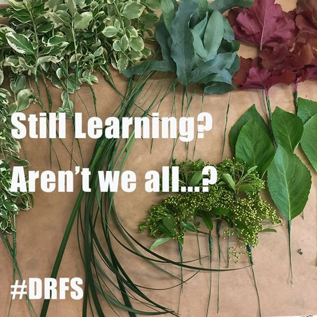 It is true that you never stop learning... and traditional techniques don't go away, but they may just get forgotten.⠀⠀⠀⠀⠀⠀⠀⠀⠀ Don't let your skill drift away...embrace the craft and create some cool sh!t...⠀⠀⠀⠀⠀⠀⠀⠀⠀ #florist #florists #learnfloristry #becreative #flowerschool #floweracademy #flowers #flower #workwithflowers #floralart #creativity #potential #bournemouthcreative #selfdevelopment #learnsomethingnew #careerchange #unlockyourpotential #thebestflorist #ukflorists #studentflorist #floriststudent #teachflowers #bournemouthevents #botanical #floralstyling #sharing #traditionaltechniques #floristry #skill #craft