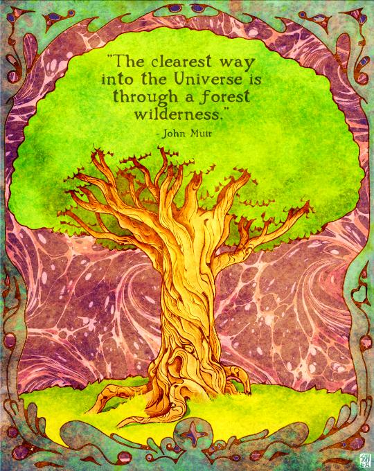 """""""Muir's Tree"""""""