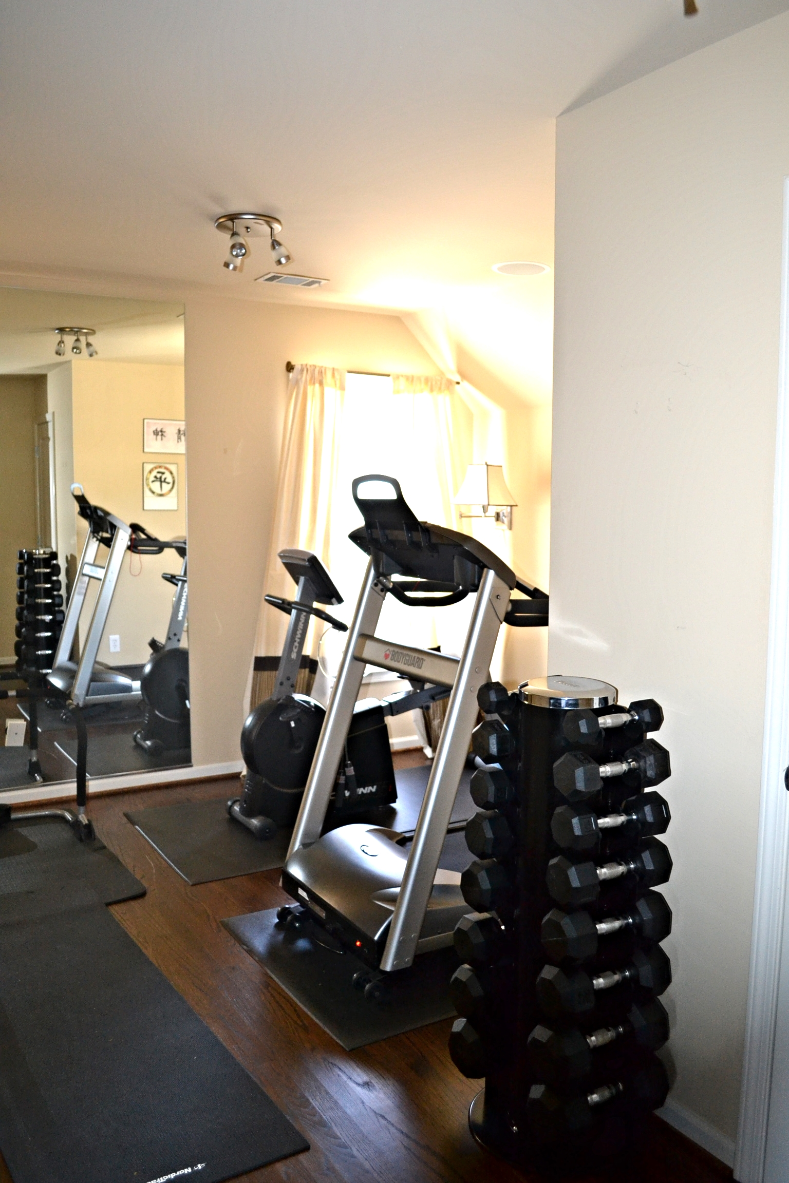 Well equipped home gym