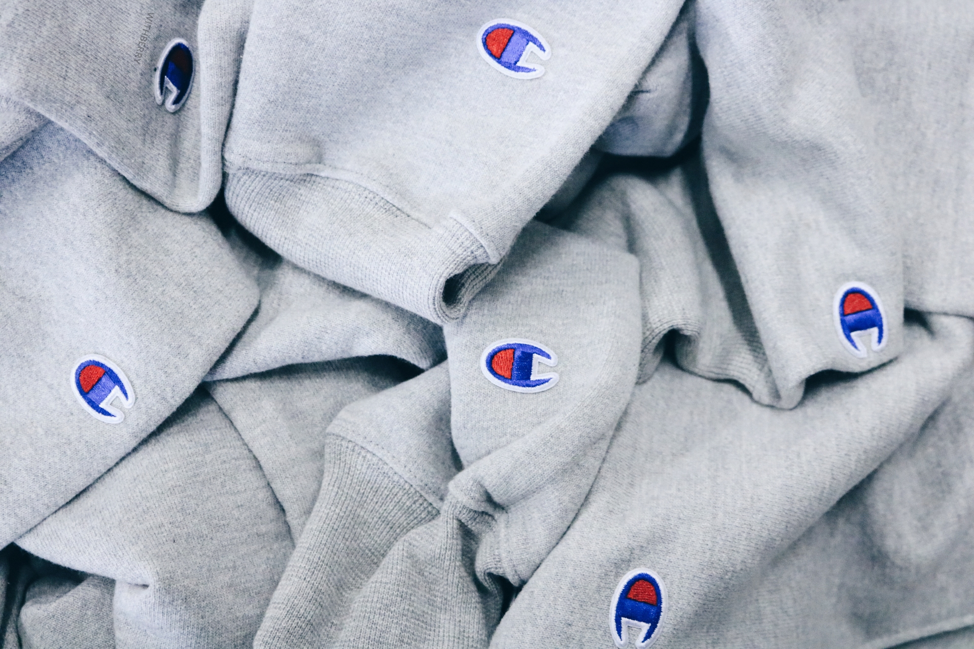 champion_hoodies_2017